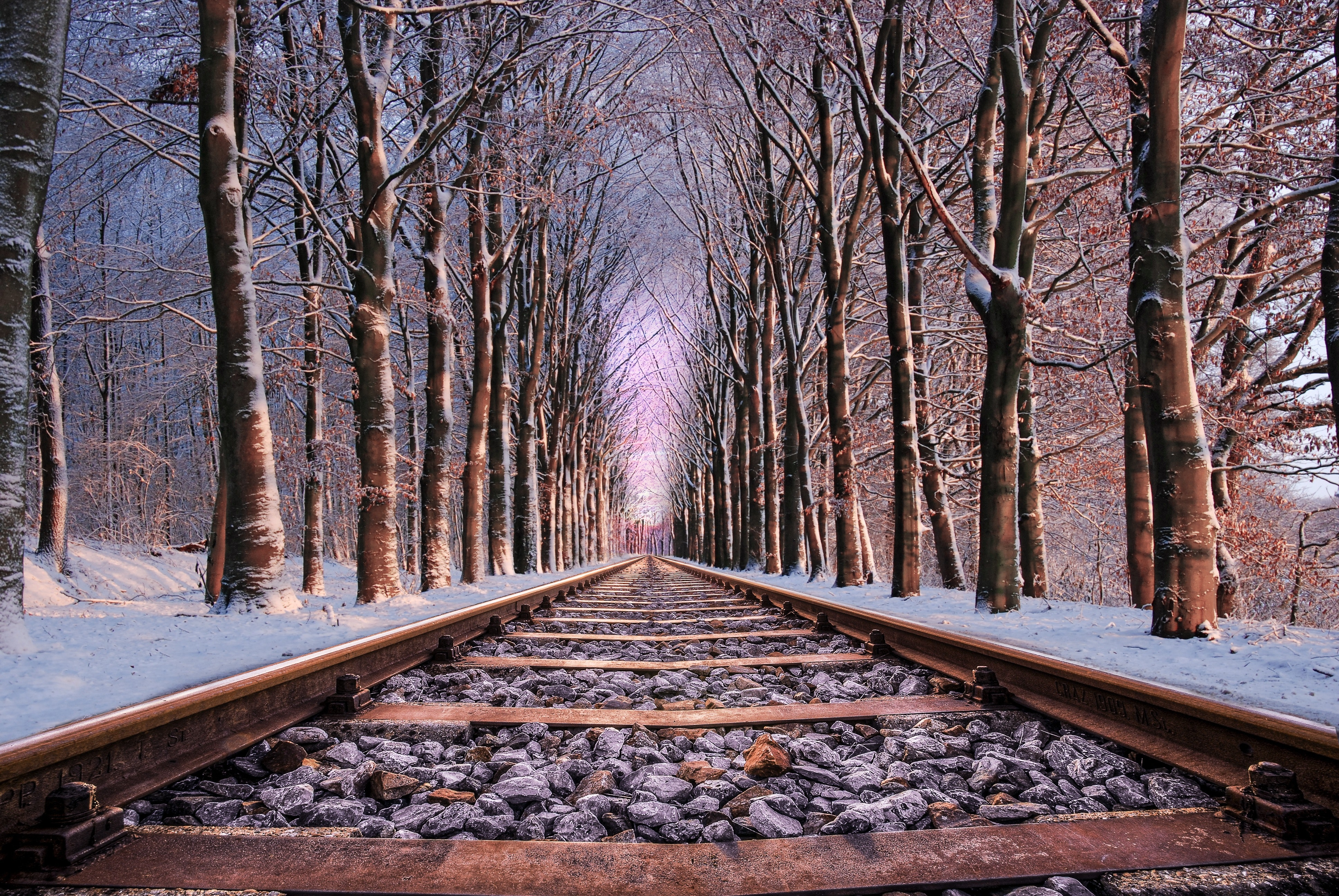 Railroad in Between the Trees, Cold, Forest, Frost, Guidance, HQ Photo