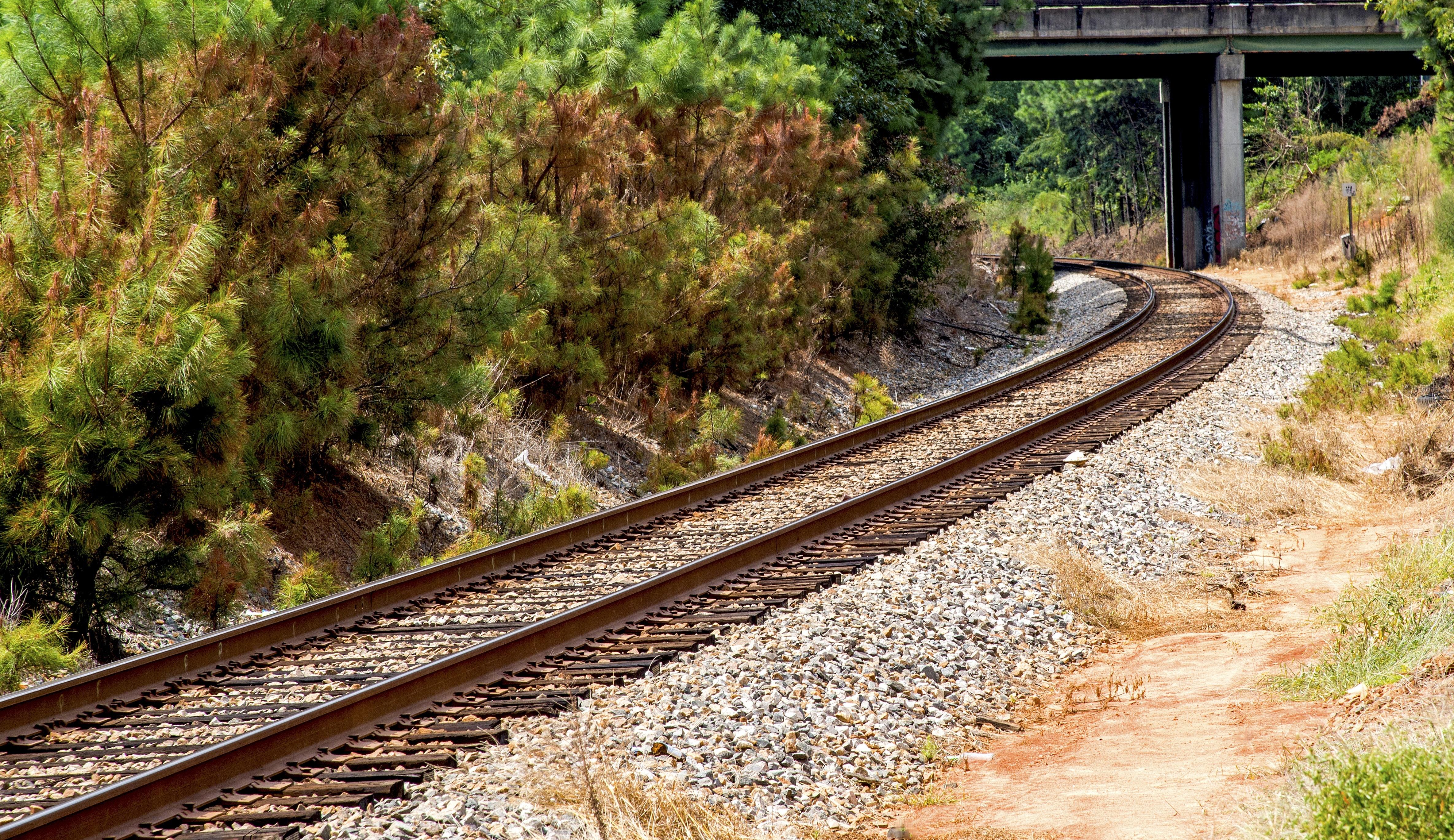 Railroad Tracks Amidst Trees, Railway track, Trees, Travel, Transportation system, HQ Photo