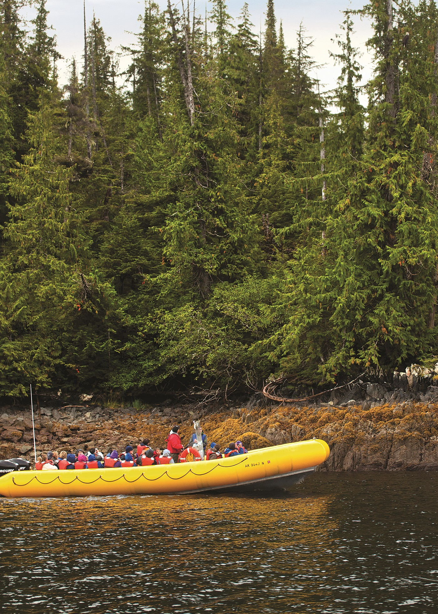 Alaska Shore Experts - Rainforest Island Adventure