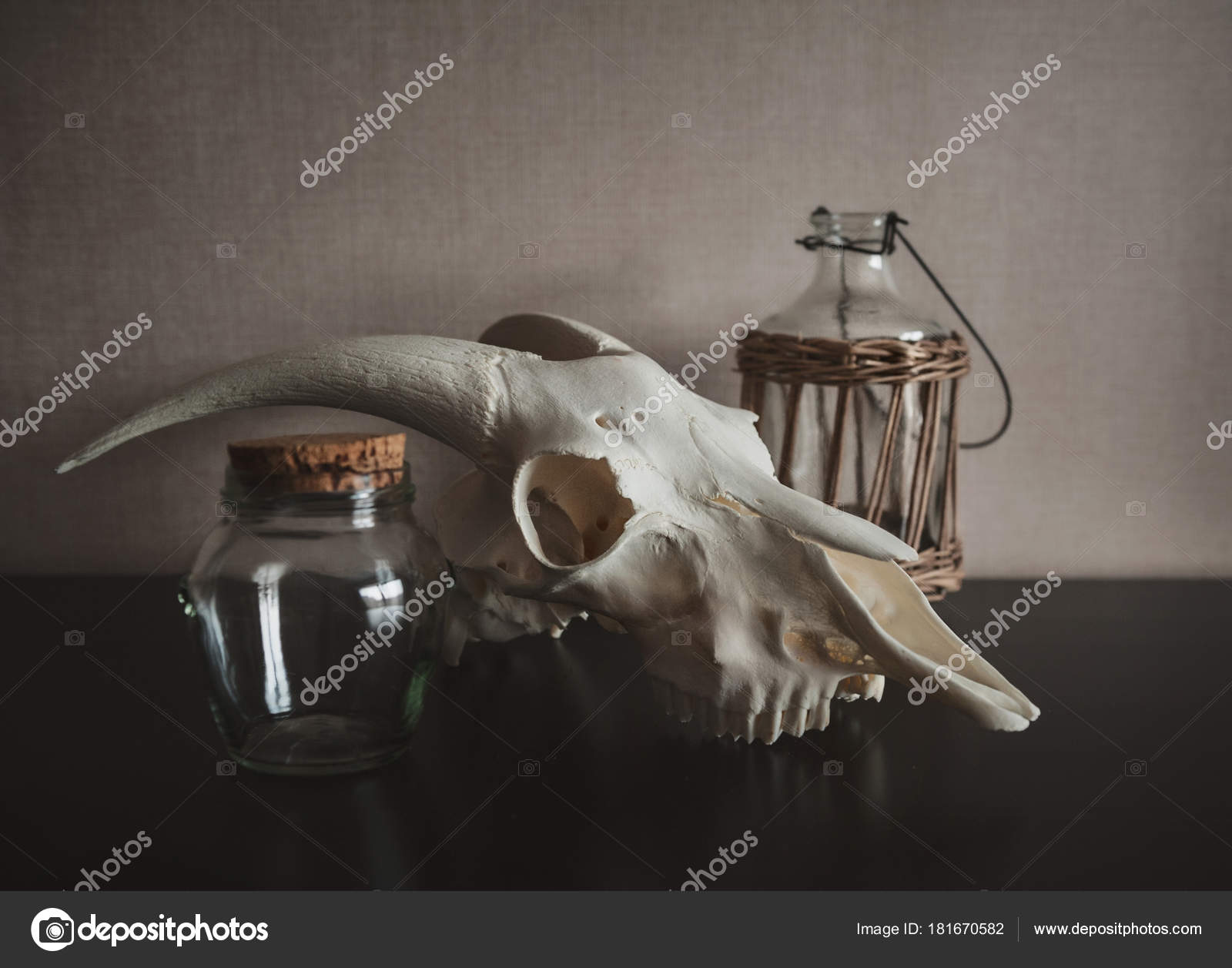 Still life with ram skull and old bottle on dark — Stock Photo ...