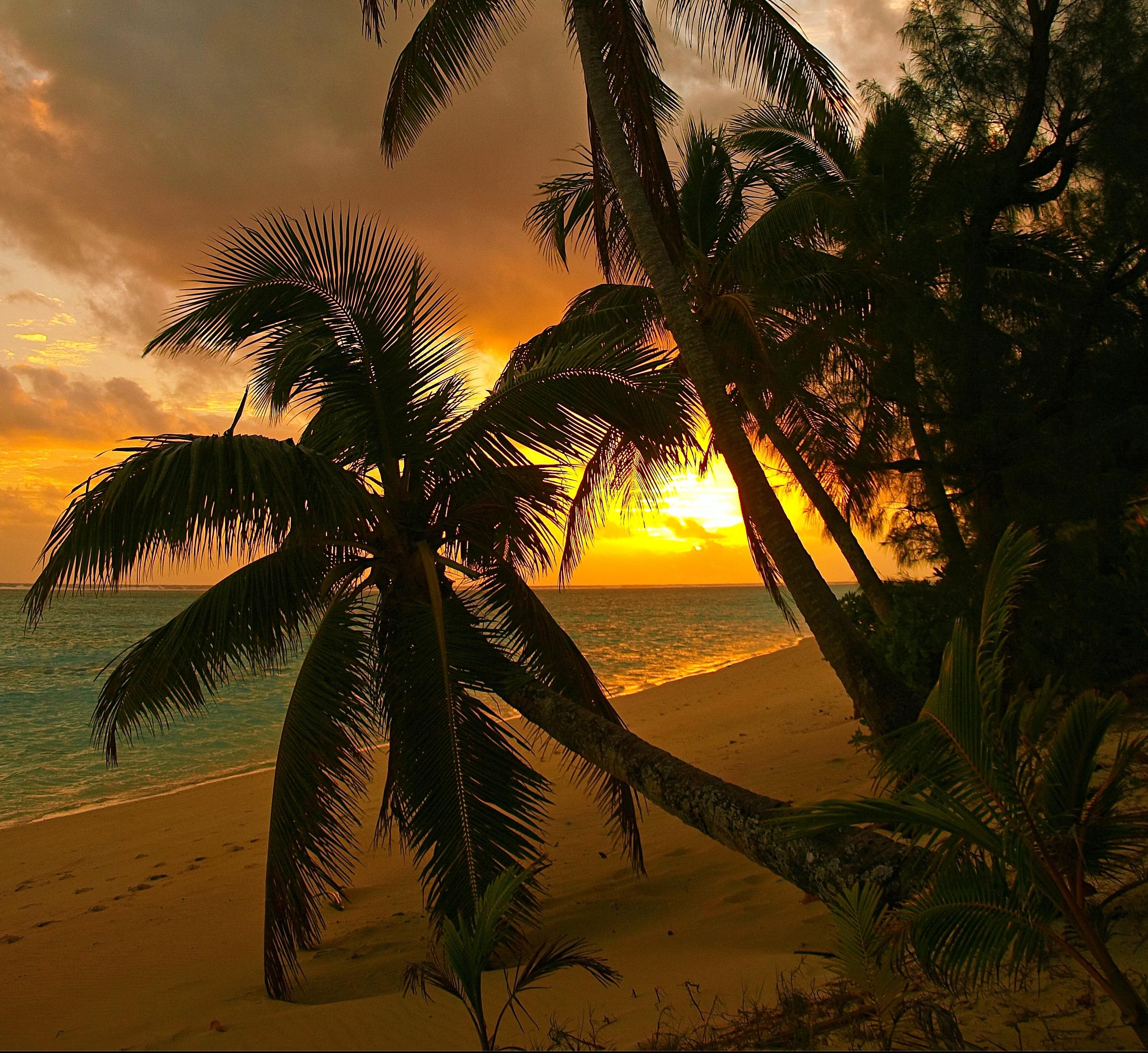 Beaches: Ocean Clouds Sunset Idyllic Pacific Beach Trees Hour ...