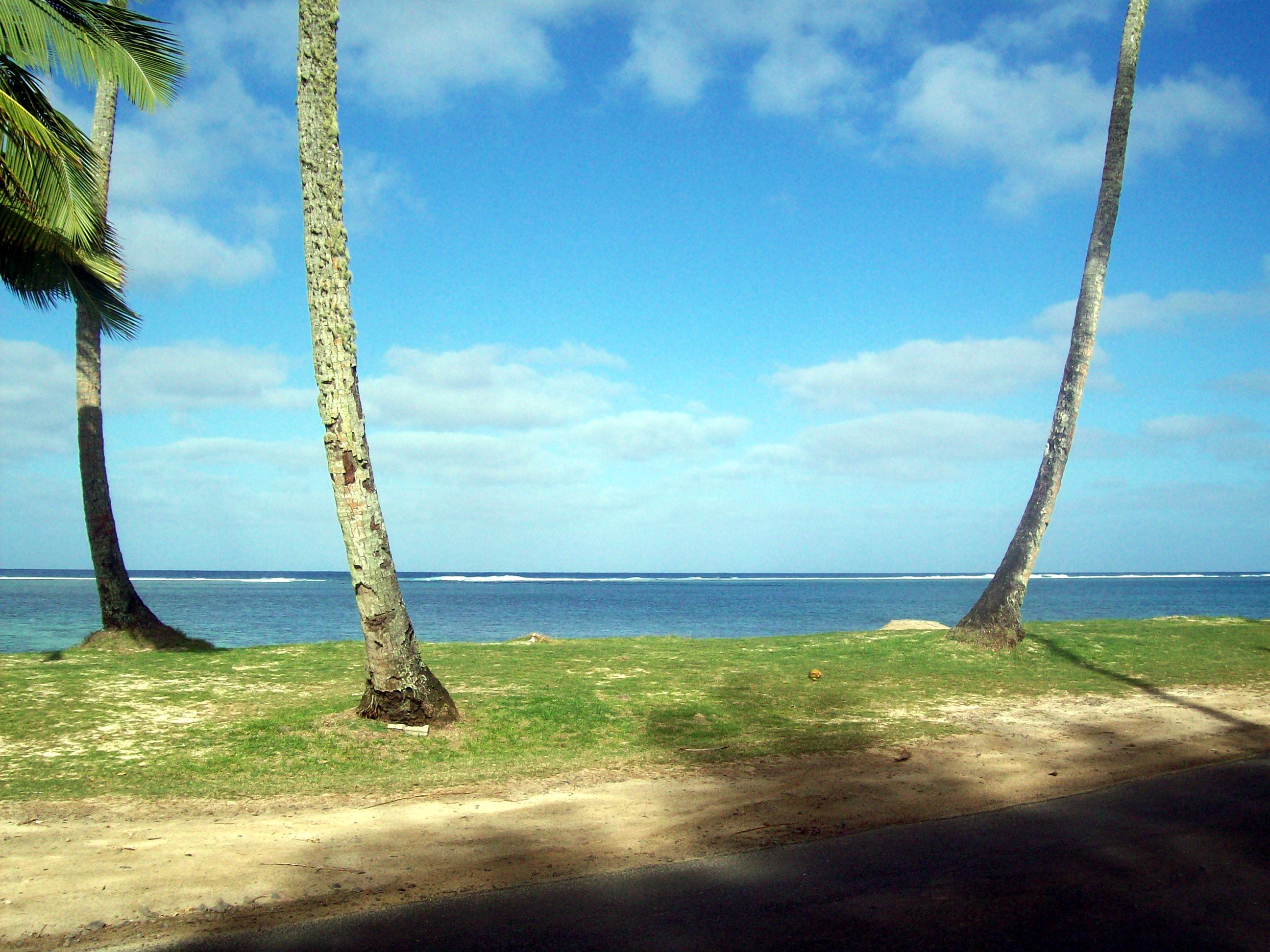 Rarotonga Beach Trees, Sea, Trees, Rarotonga, Raro, HQ Photo