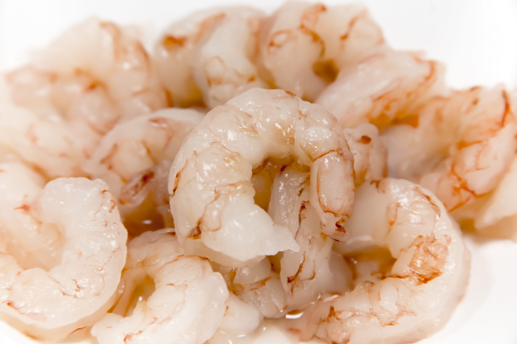 Free Photo Raw Shrimp Shrimp Raw Seafood Free Download Jooinn