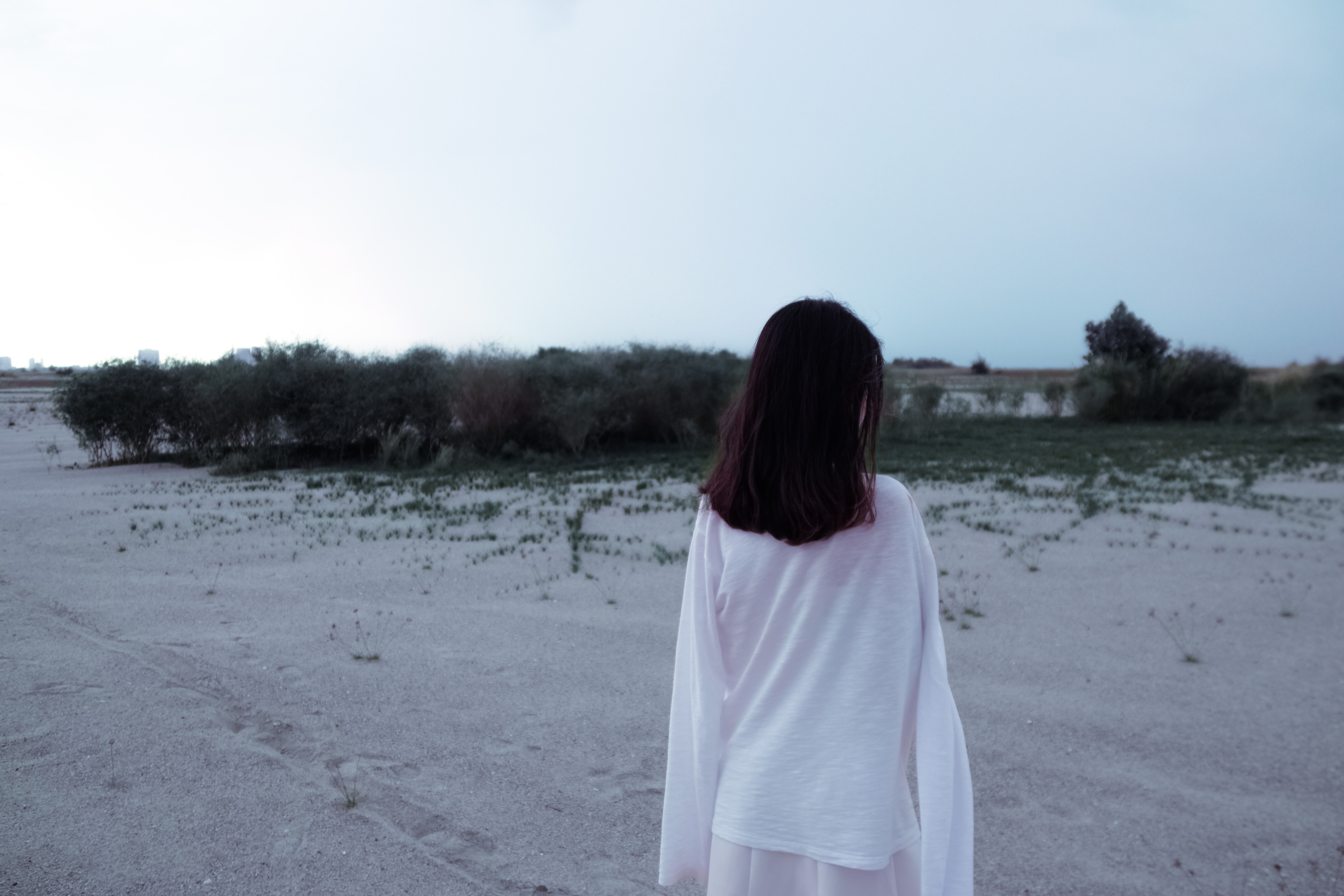 Rear View of Woman Standing on Beach, Sand, White lady, Weather, Trees, HQ Photo