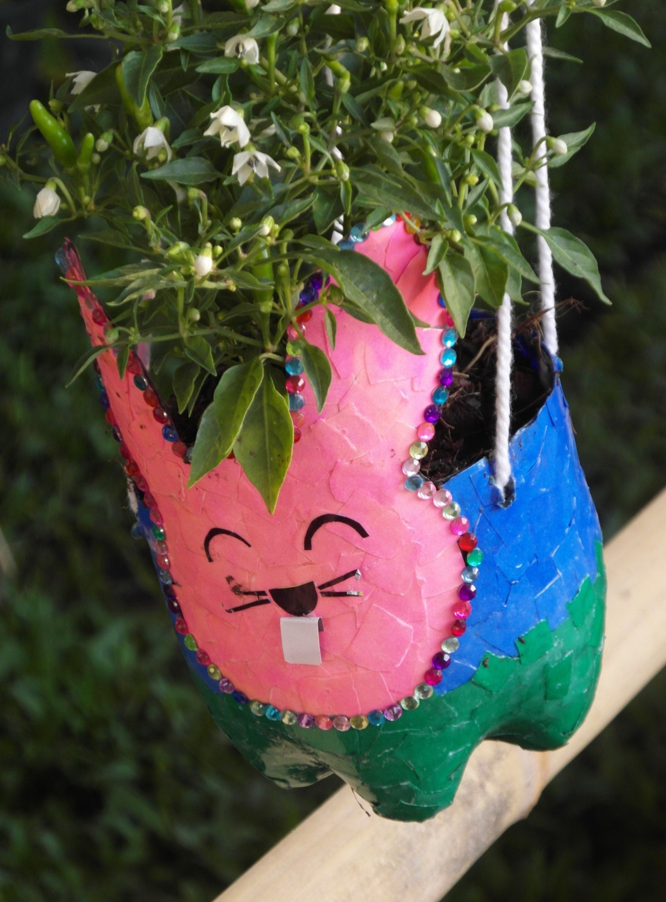 Recycled bottles craft plant pot photo