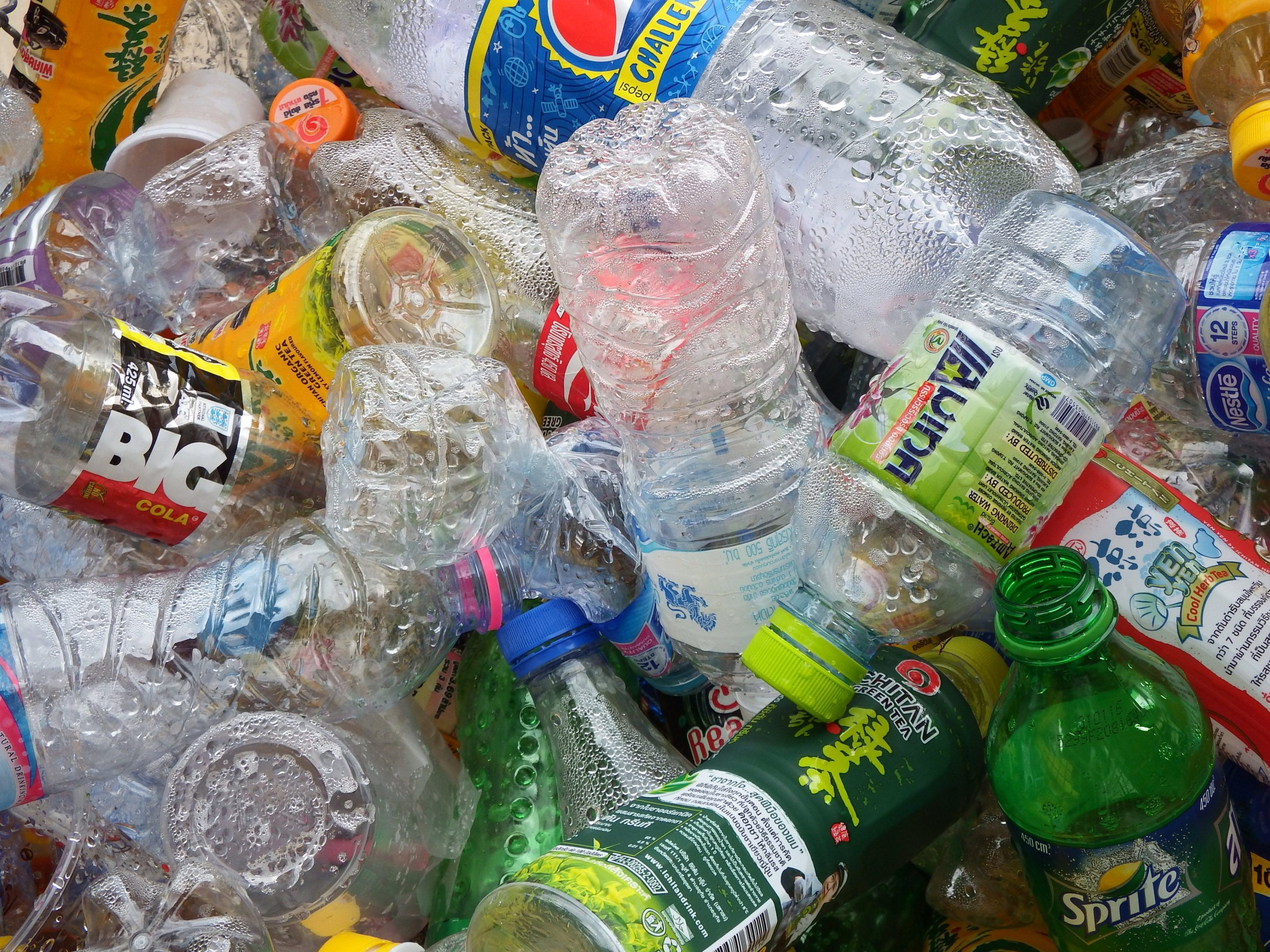 Free photo Recycled Plastic Bottles recycle plastic recycled