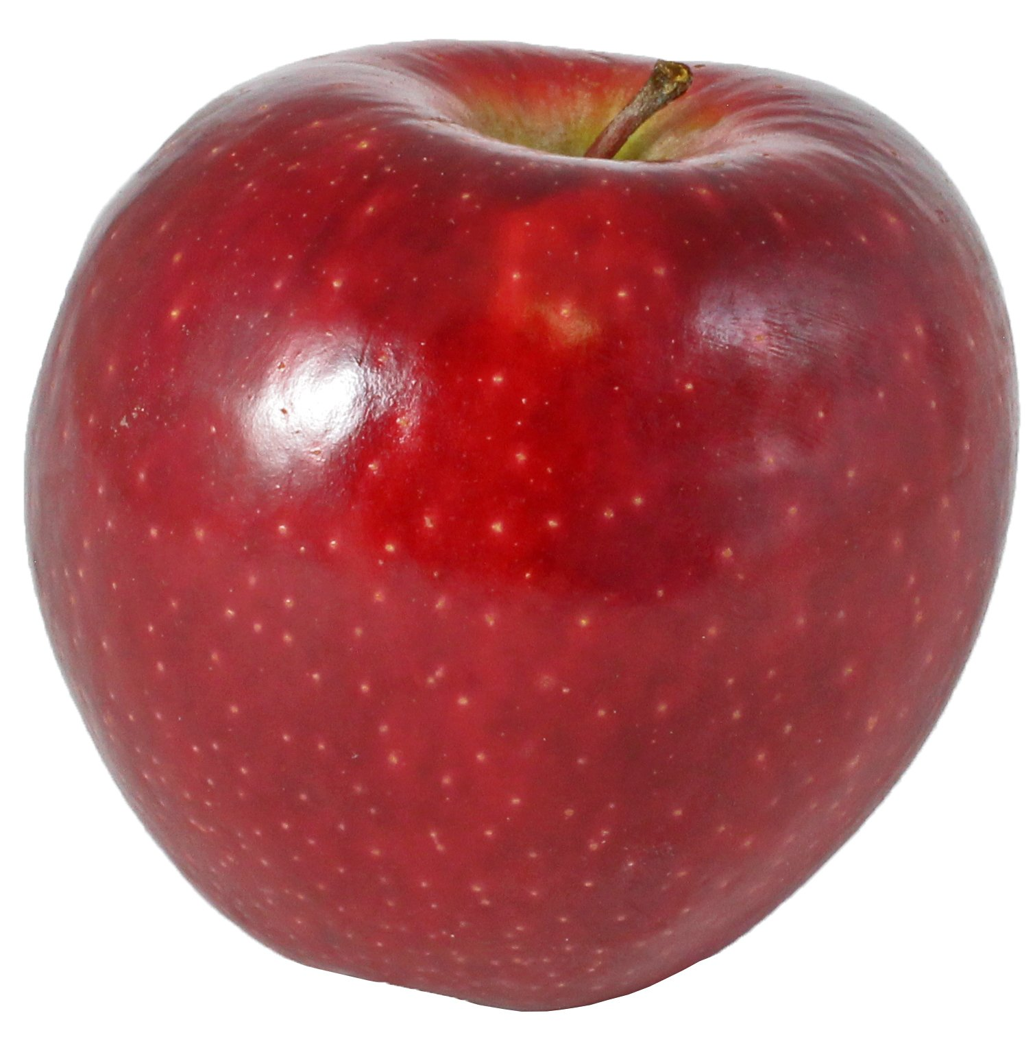 Different Types of Apples (with Photos!)