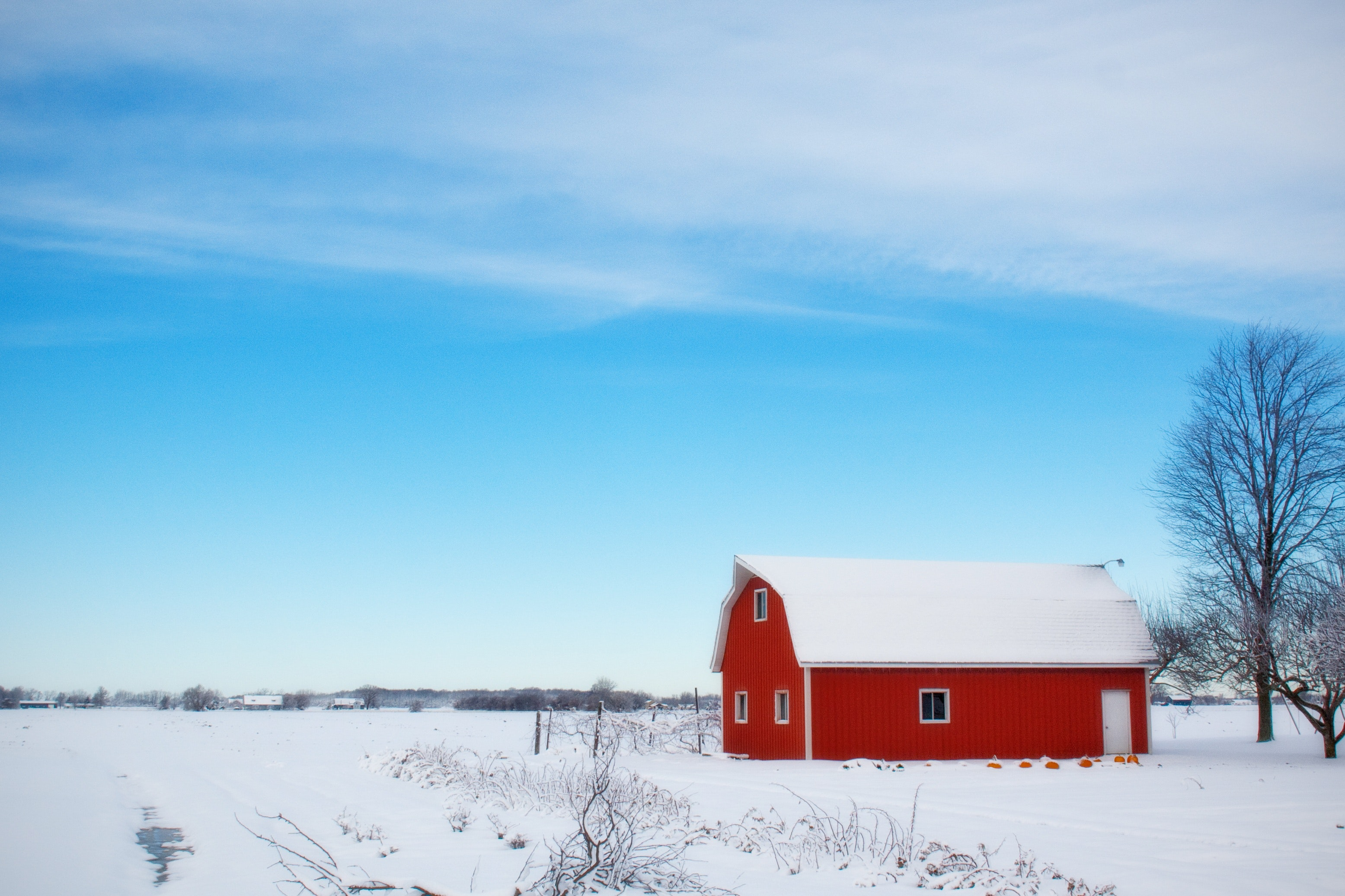 Red barn house in the middle of snow field during daytime photo