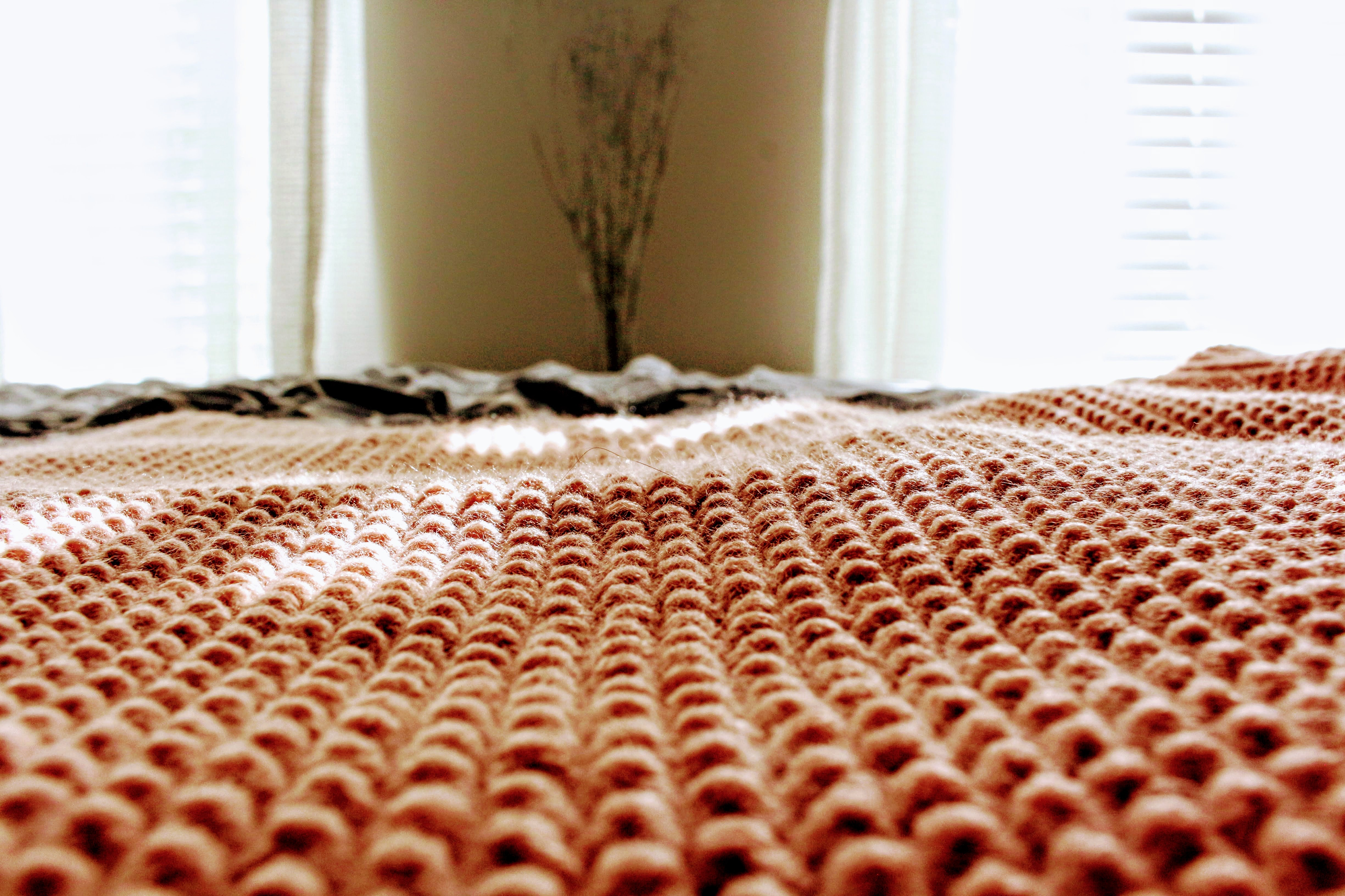 Red Carpet Selective Focus Photography, Bed, Indoors, Room, Plant, HQ Photo