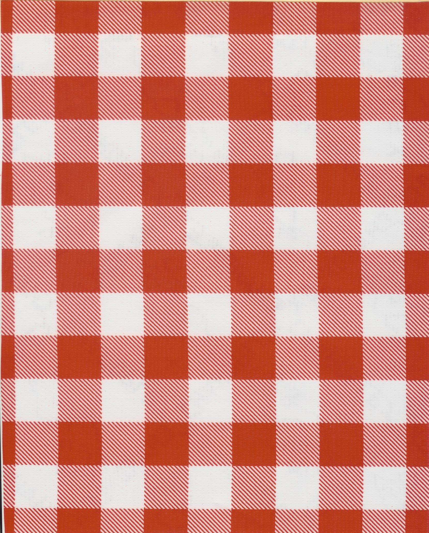 Picnic Check Red
