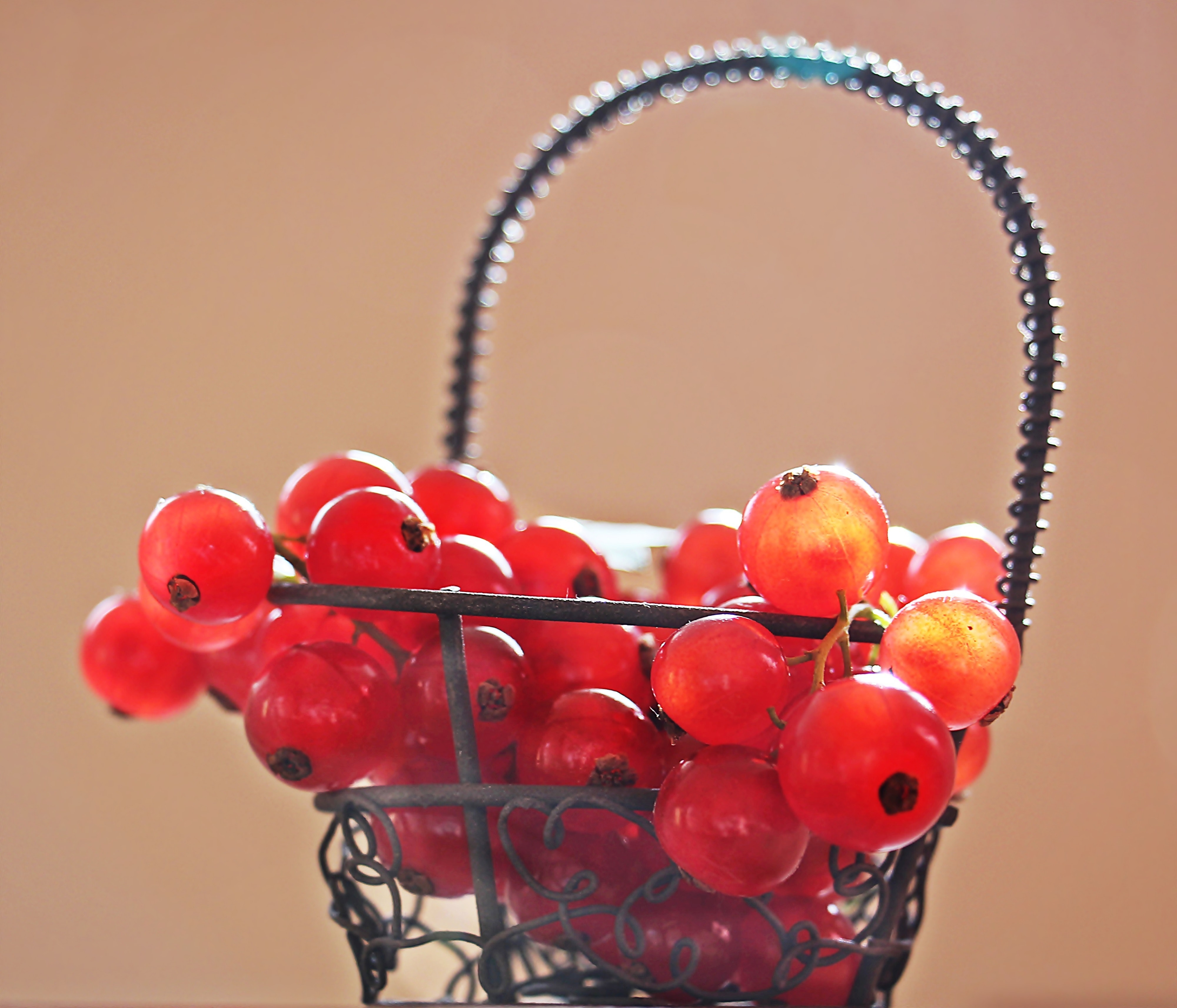 Red Cherries on Silver Metal Basket Photo, Basket, Fresh, Tasty, Still life, HQ Photo