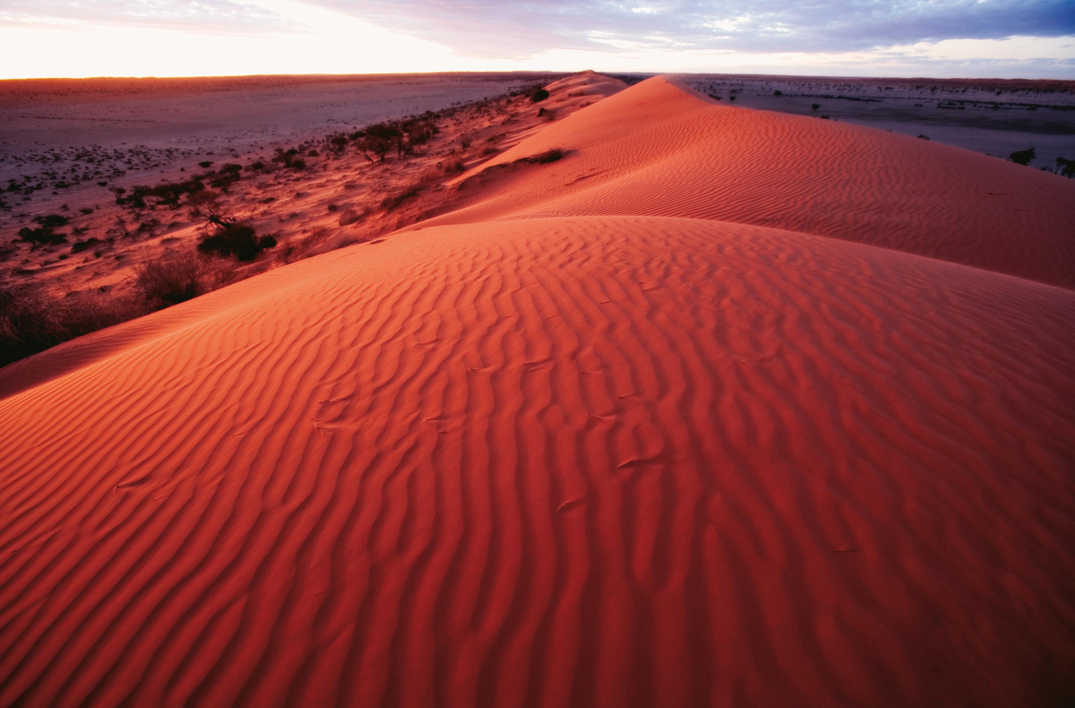 Dramatic red-sand dunes near Birdsville, Outback Queensland ...