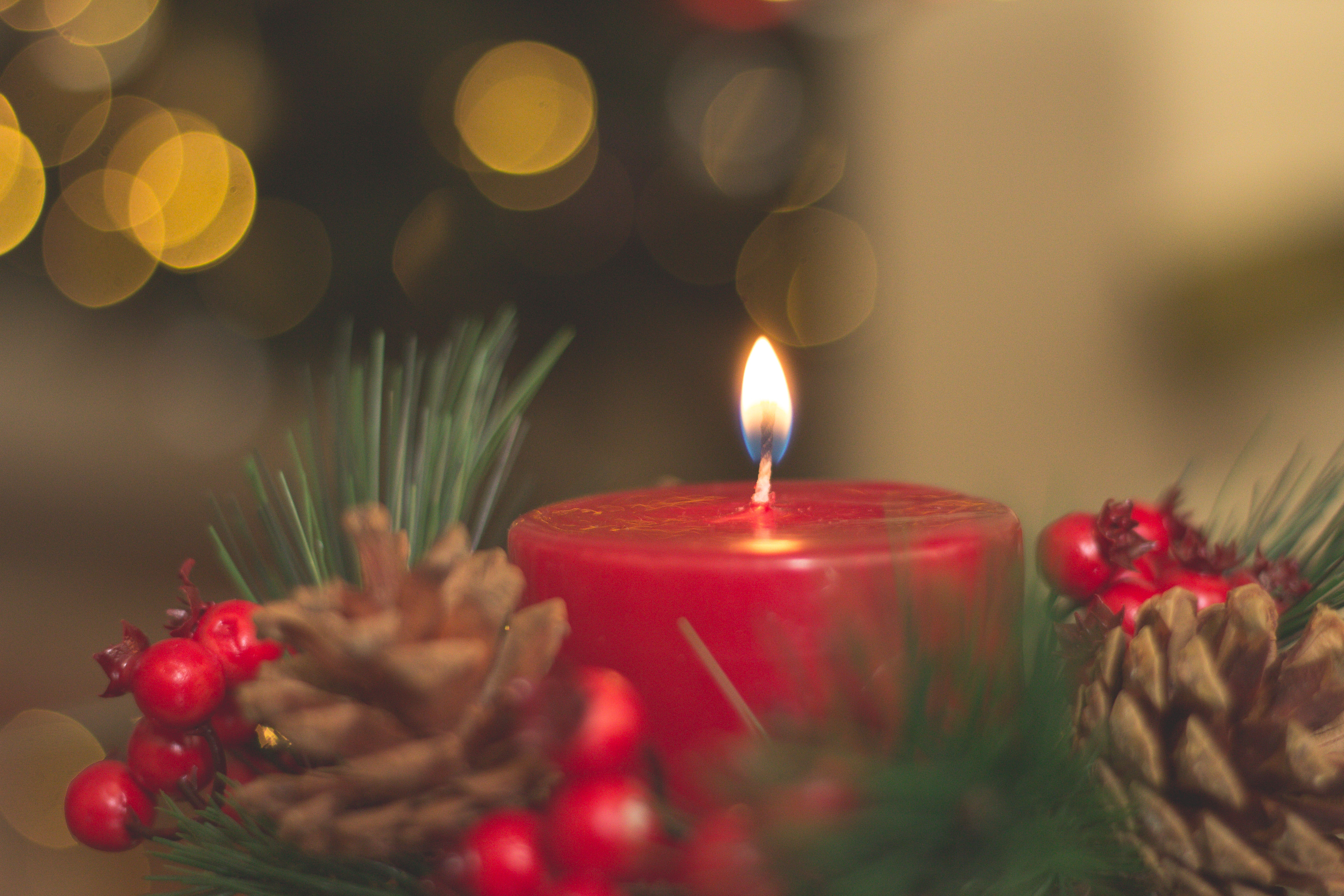 Red Lighted Candle, Advent, Decor, Pine cones, Light, HQ Photo