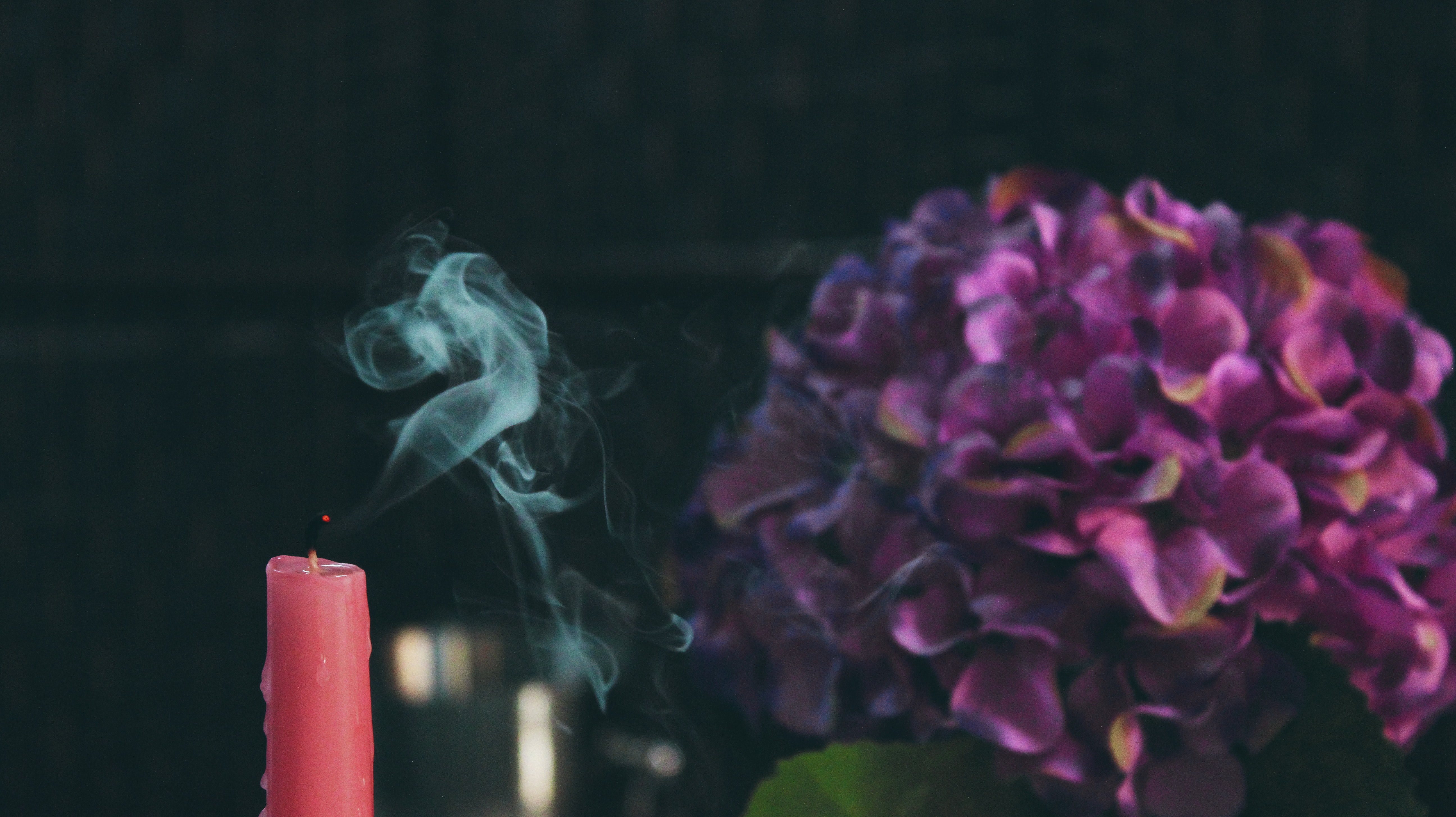 Red pillar candle beside purple flower photo