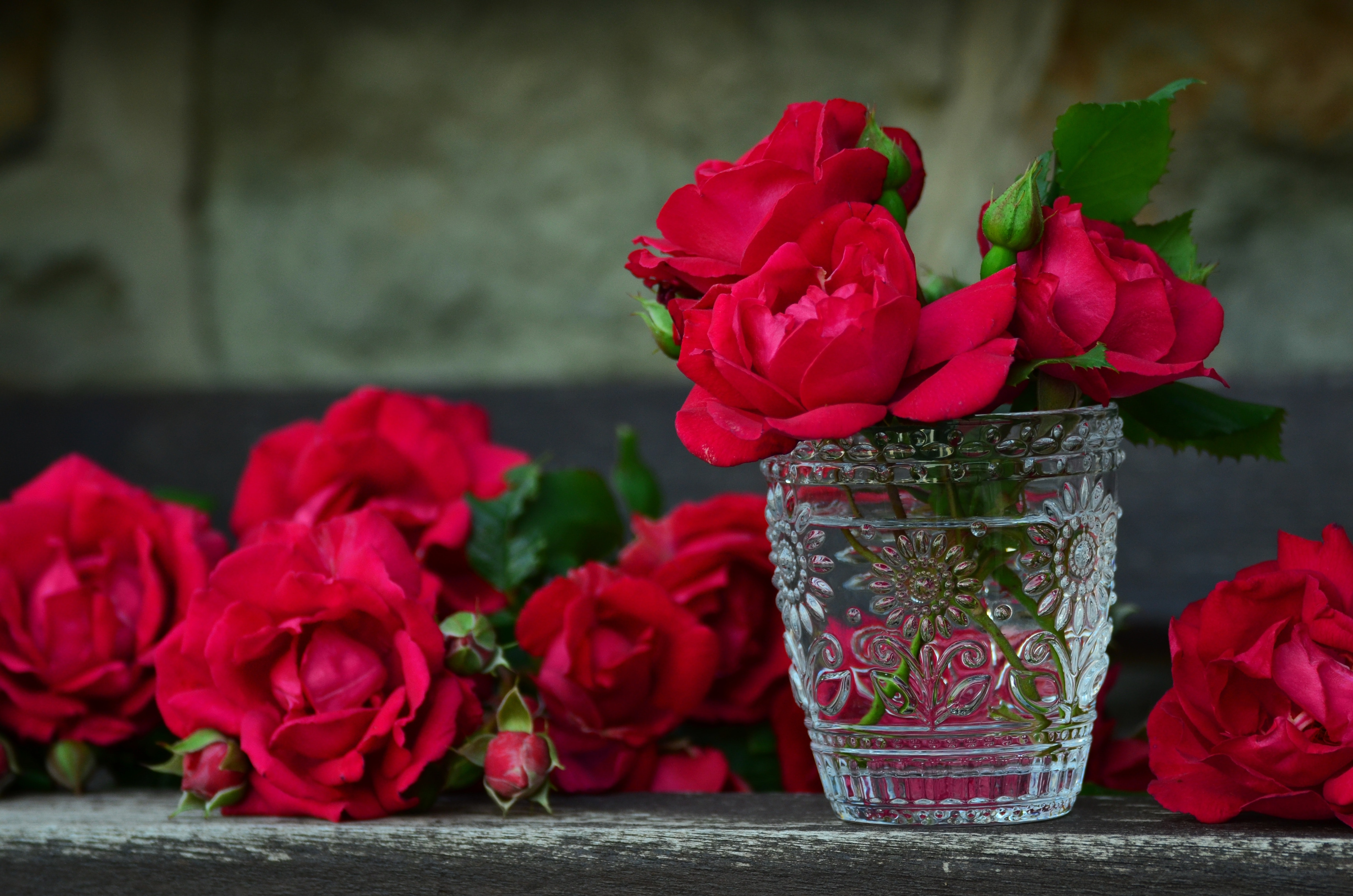 3 Red Rose on Glass Container · Free Stock Photo