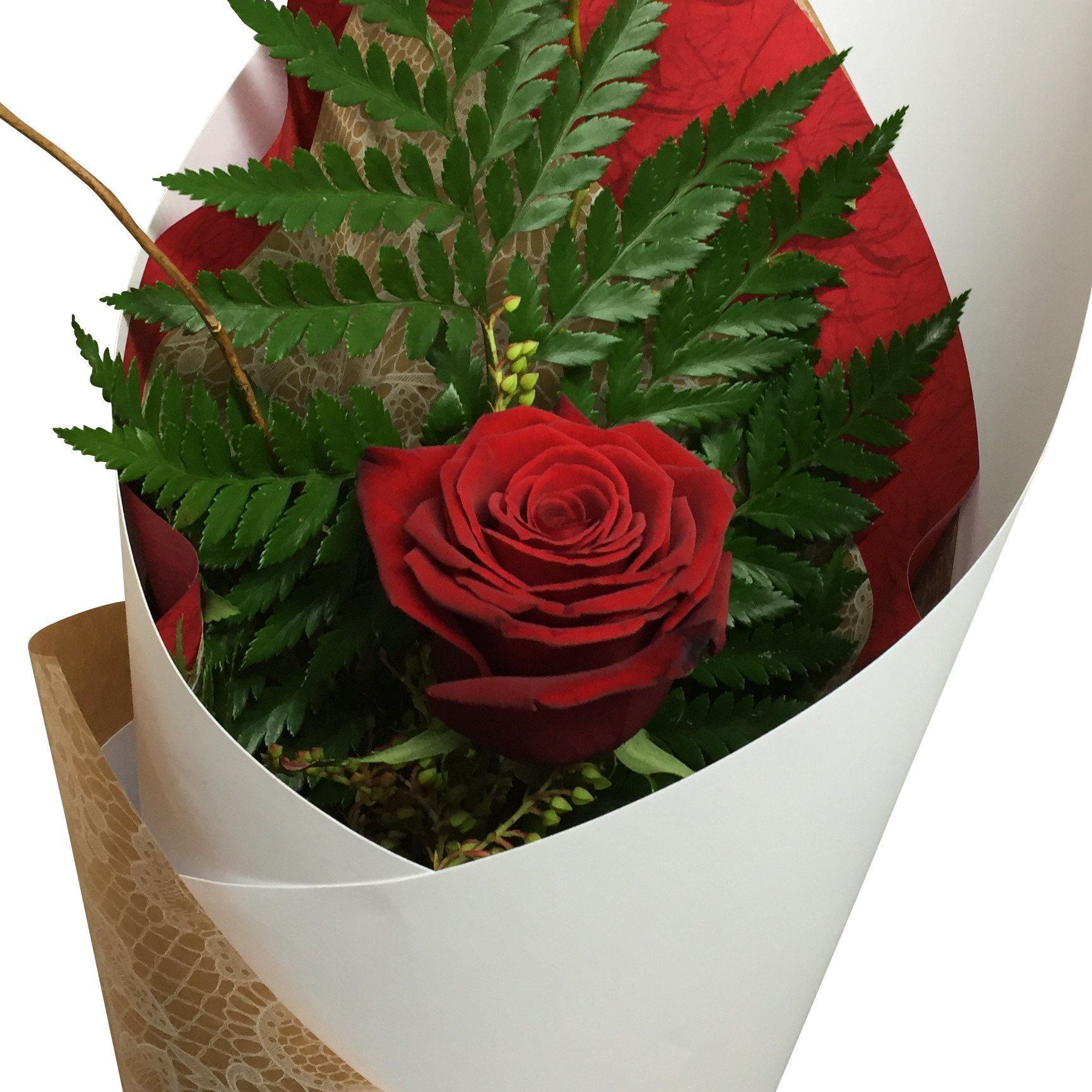 Single Red Rose Flower Delivery | Florist Wellington NZ - Flower ...