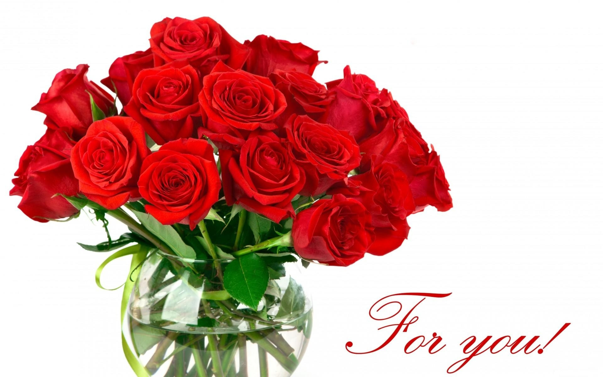 Roses Love HD Wallpaper Latest Wallpapers Tearing Red Rose Flower ...