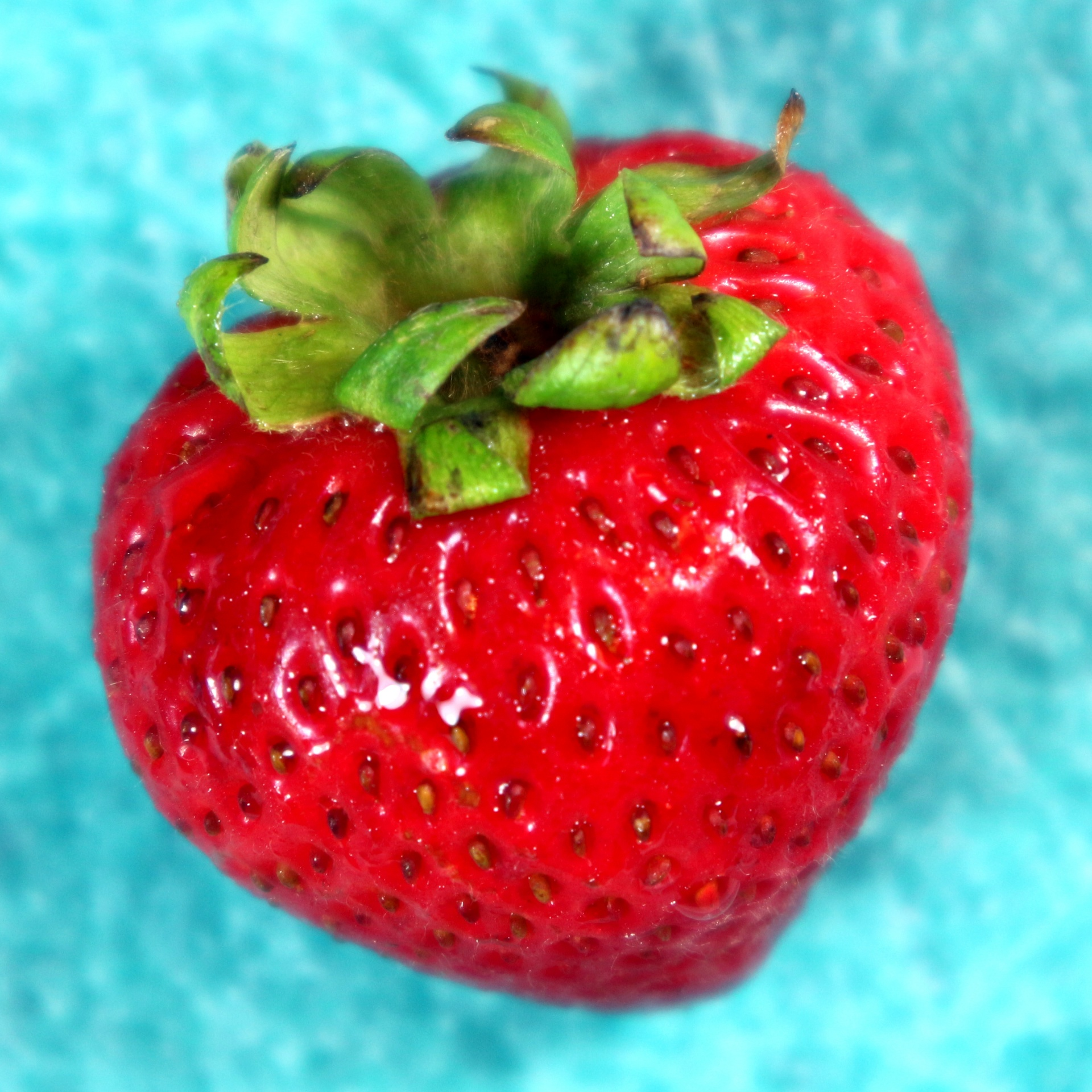 Red Strawberry Free Stock Photo - Public Domain Pictures