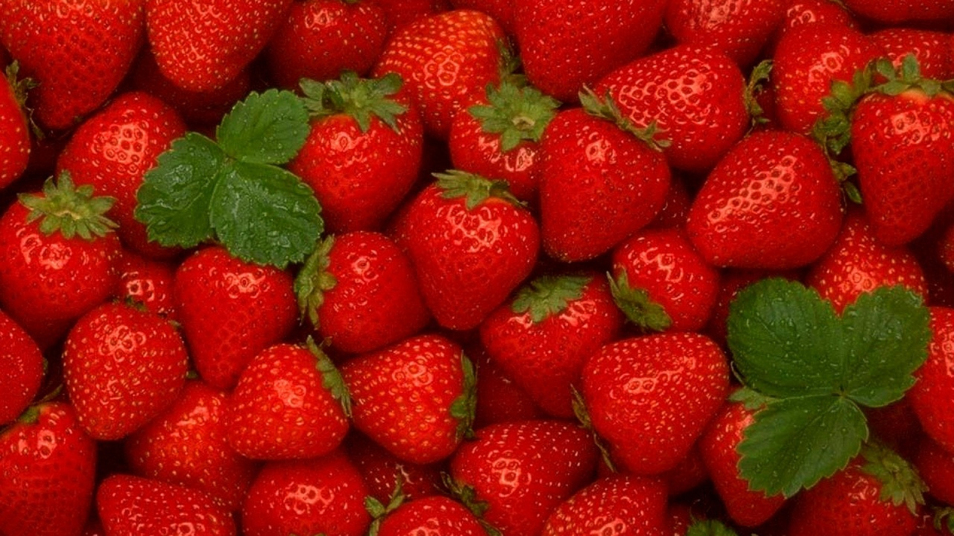 Download Wallpaper 1920x1080 strawberry, ripe, red, berry, leaves ...
