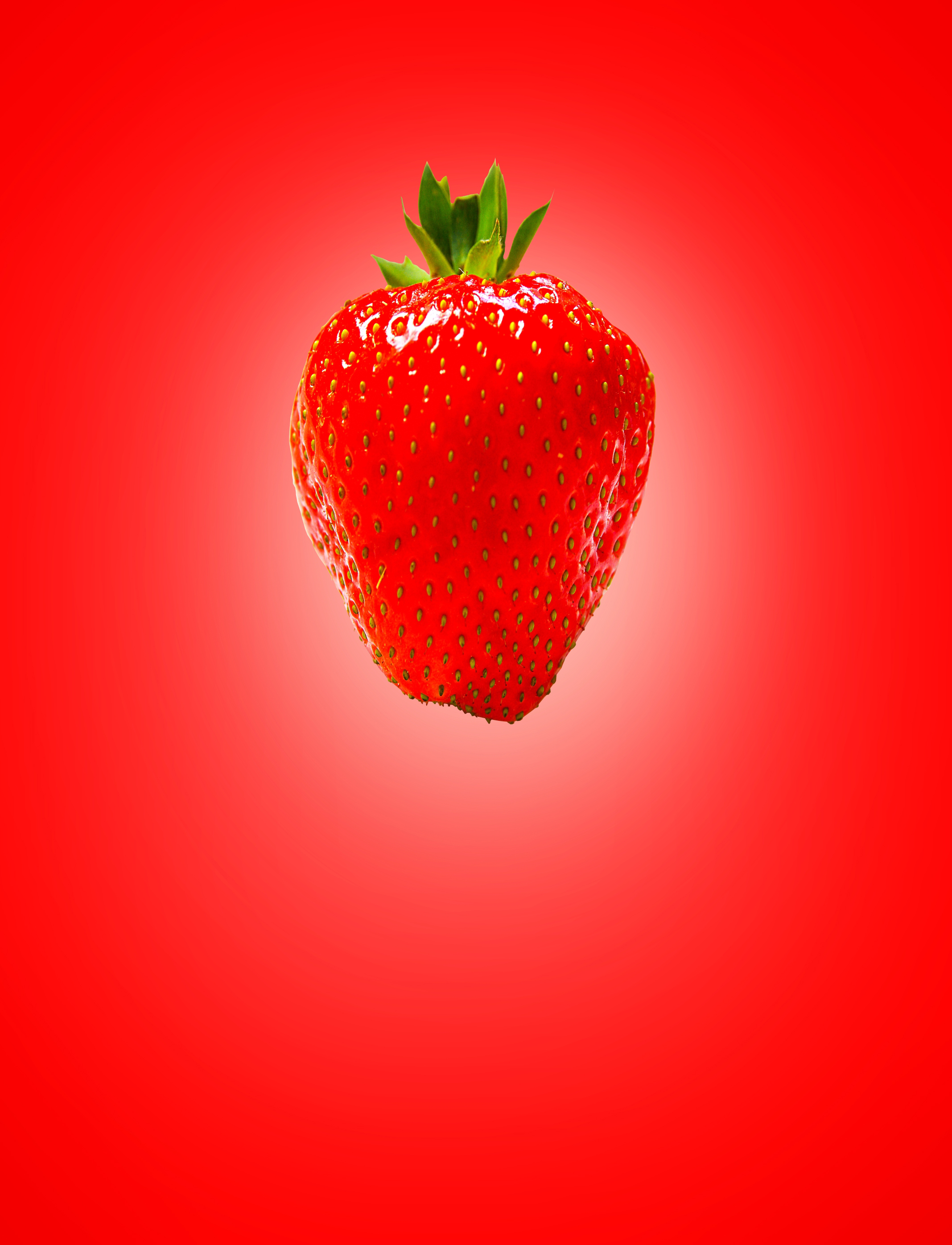 Red (strawberry) on red (background) photo