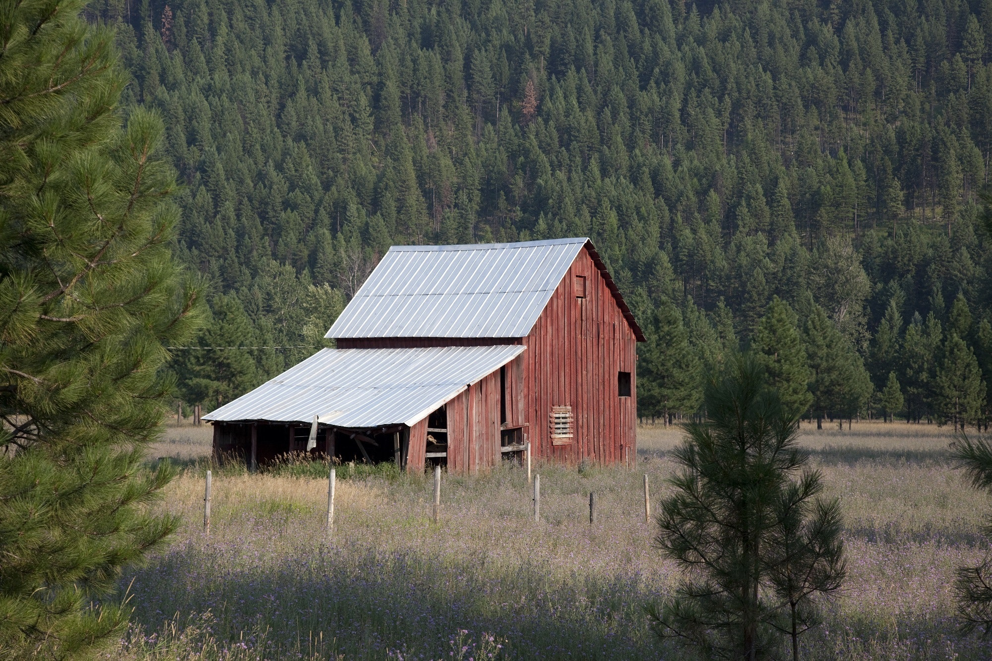 Red wooden barn during daytime photo