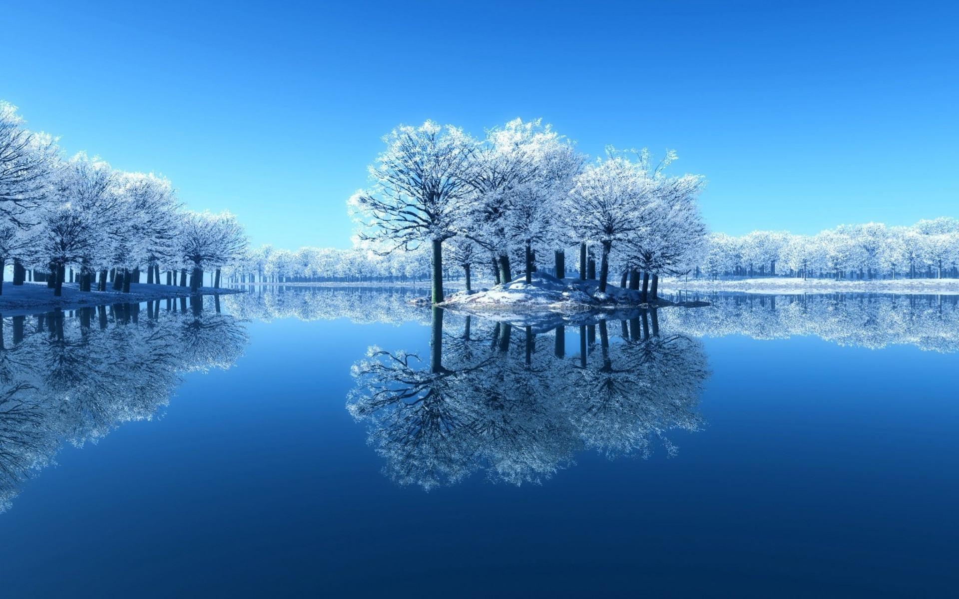 Reflection Arts