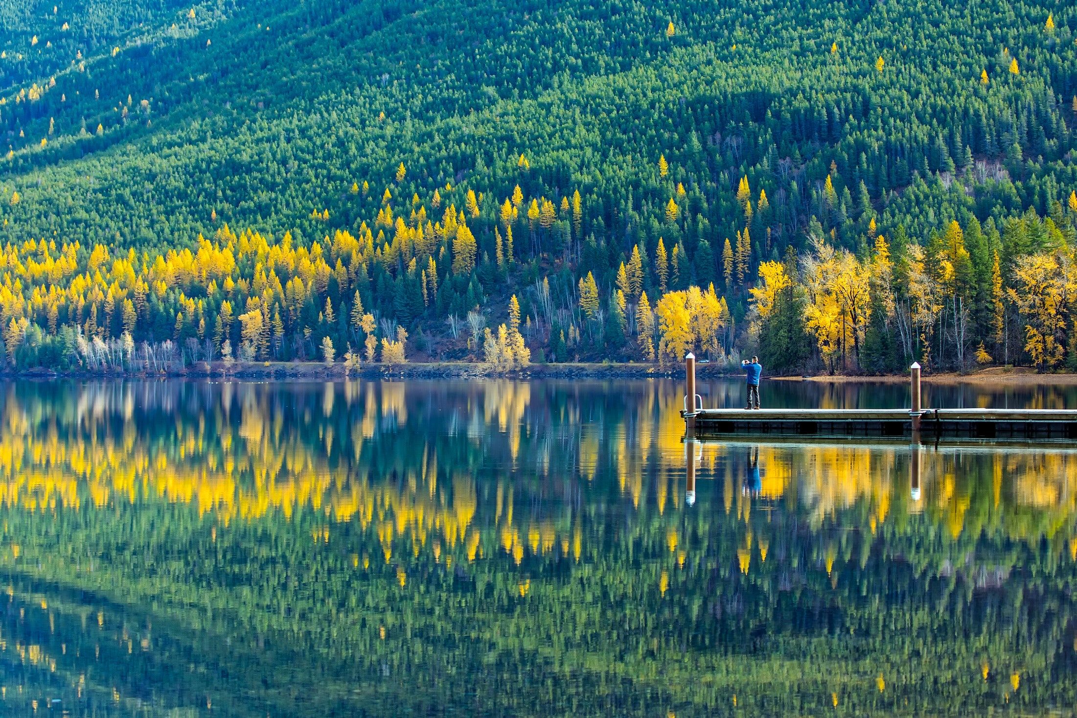Reflection of trees in lake photo