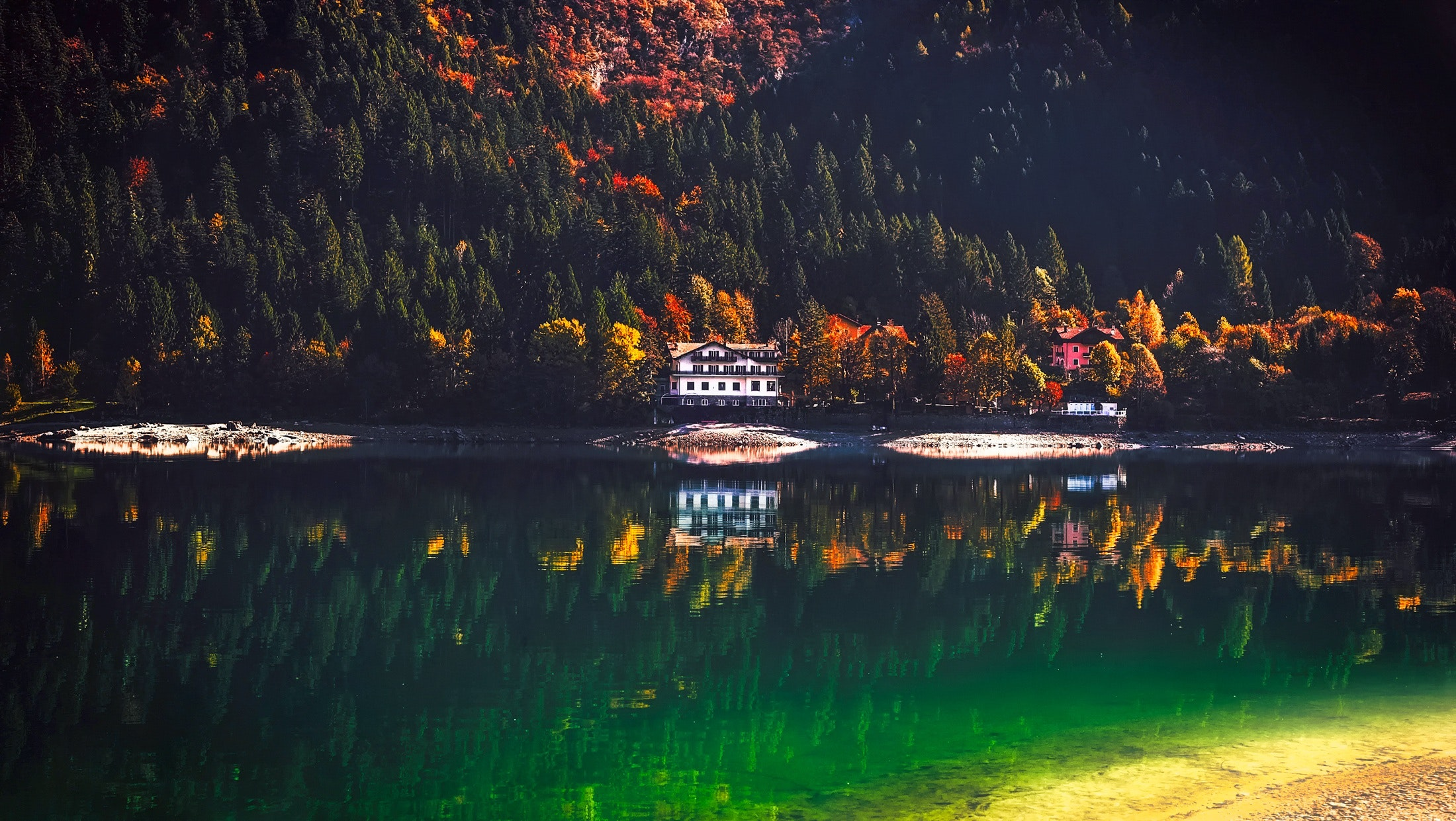 Reflection of Trees in Lake, Architecture, Shore, Reflection, Reflections, HQ Photo