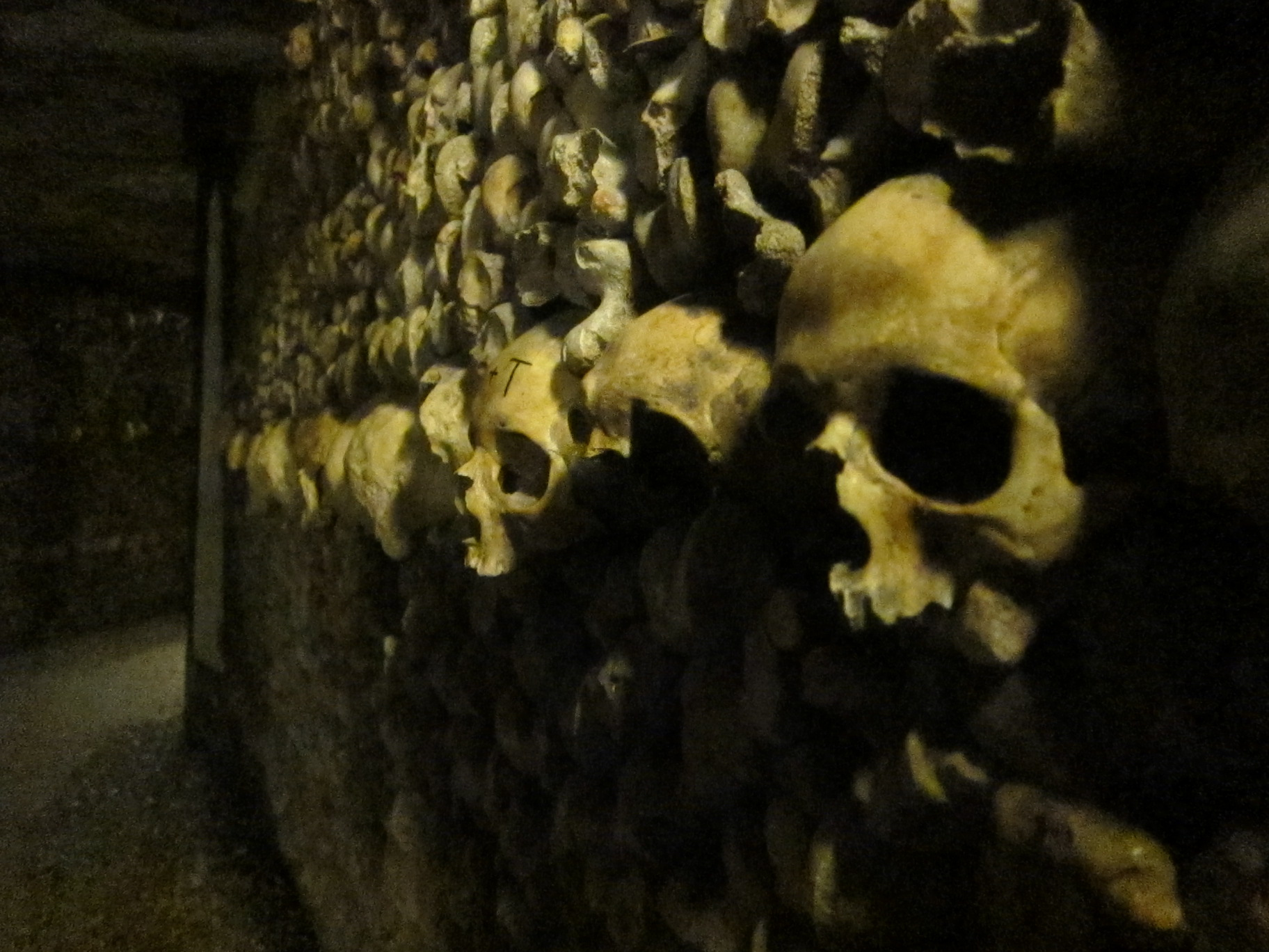 Remains - Catacombs, Skull, Skulls, Remains, Kill, HQ Photo