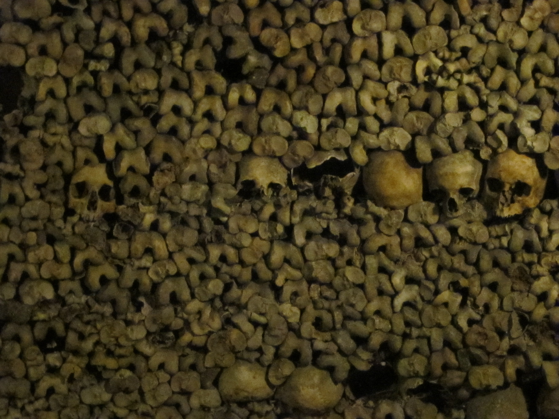Remains - catacombs photo