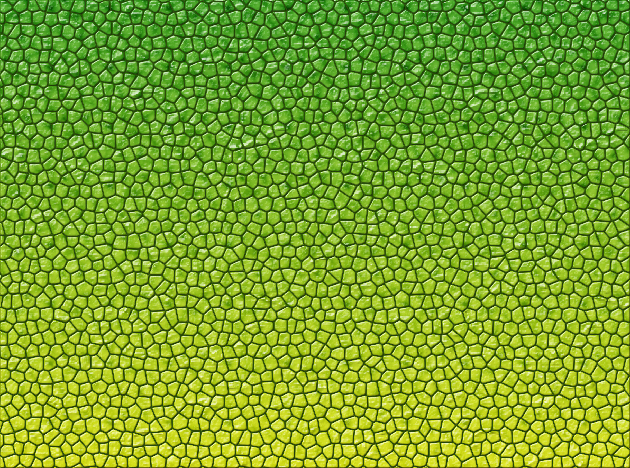 Reptile skin texture, Dragon, Green, Reptile, Reptiles, HQ Photo