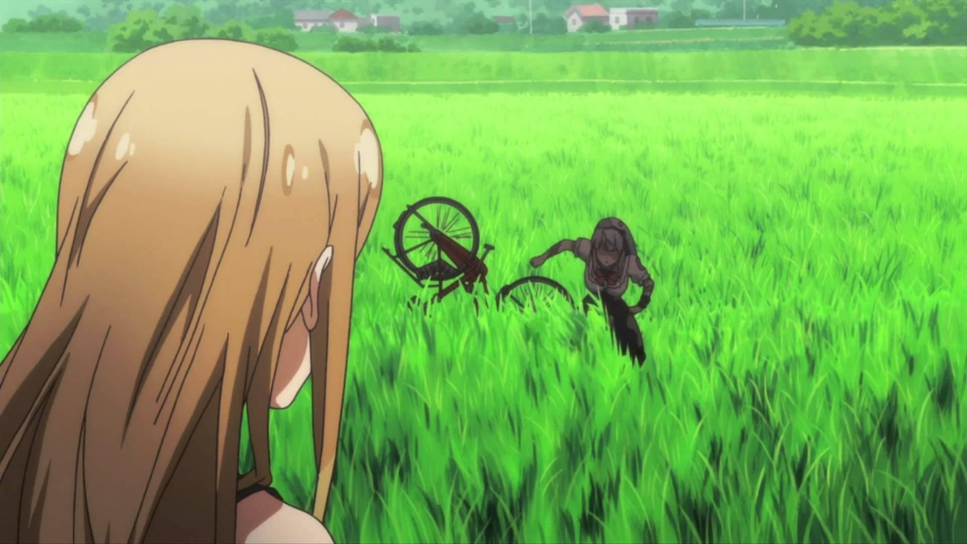 Rice Fields - YouTube