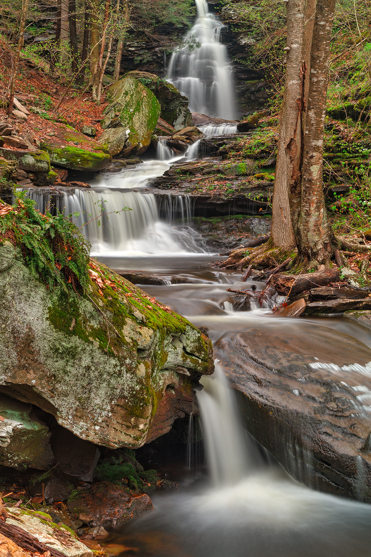 Ricketts glen waterfall layers - hdr photo