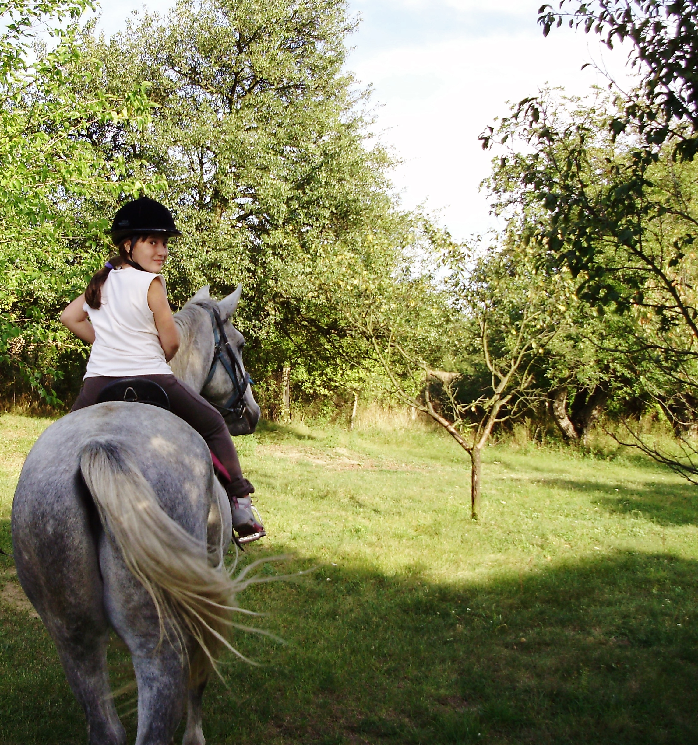 Ride away, Girl, Horse, Nature, Plants, HQ Photo
