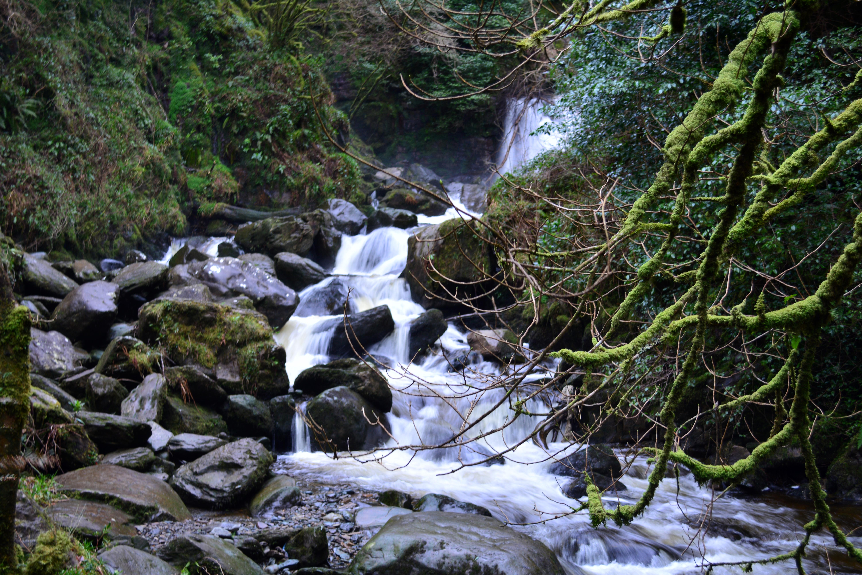 Ring of Kerry - 34, Creek, Eire, Ireland, Irland, HQ Photo