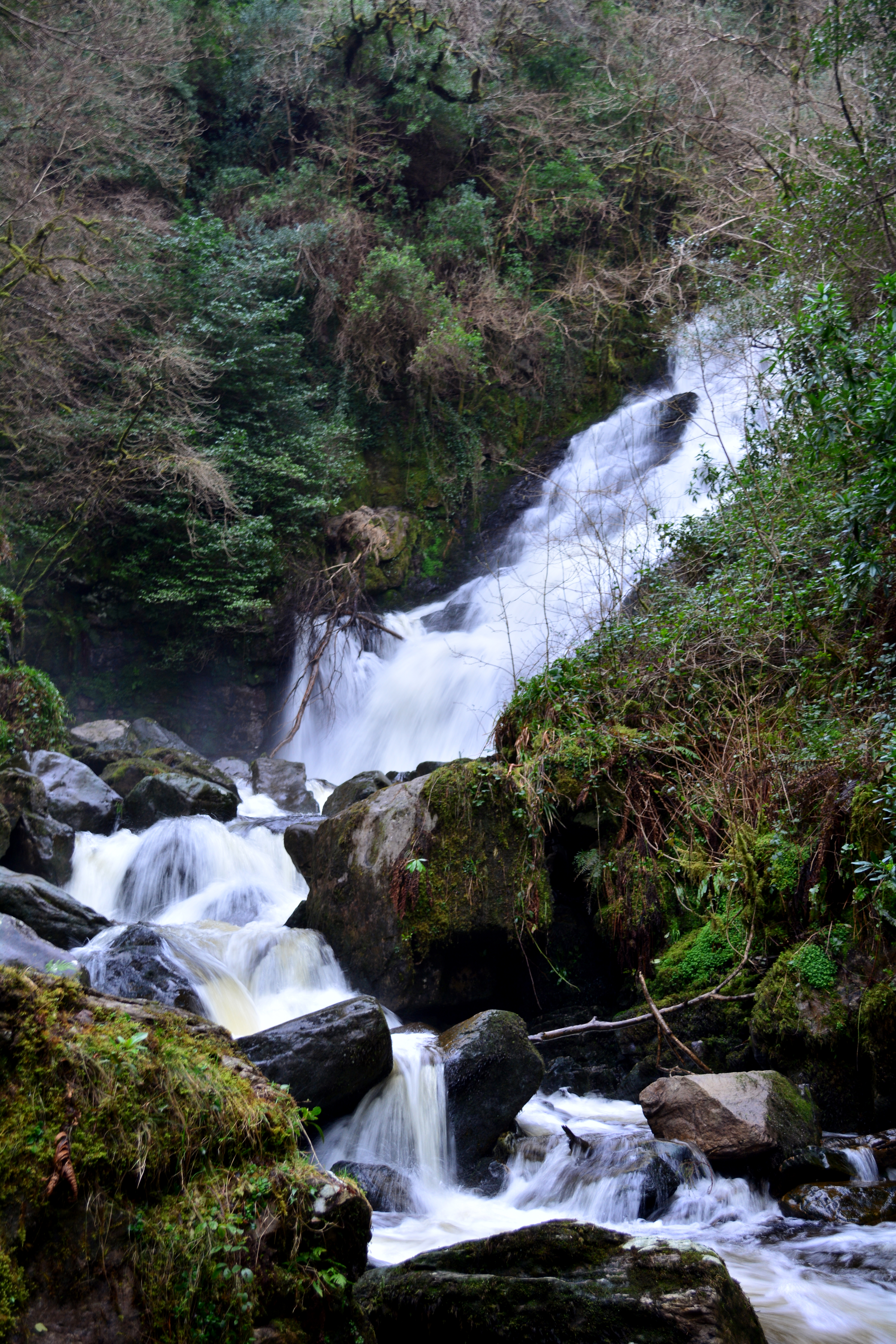 Ring of Kerry - 37, Creek, Eire, Ireland, Irland, HQ Photo