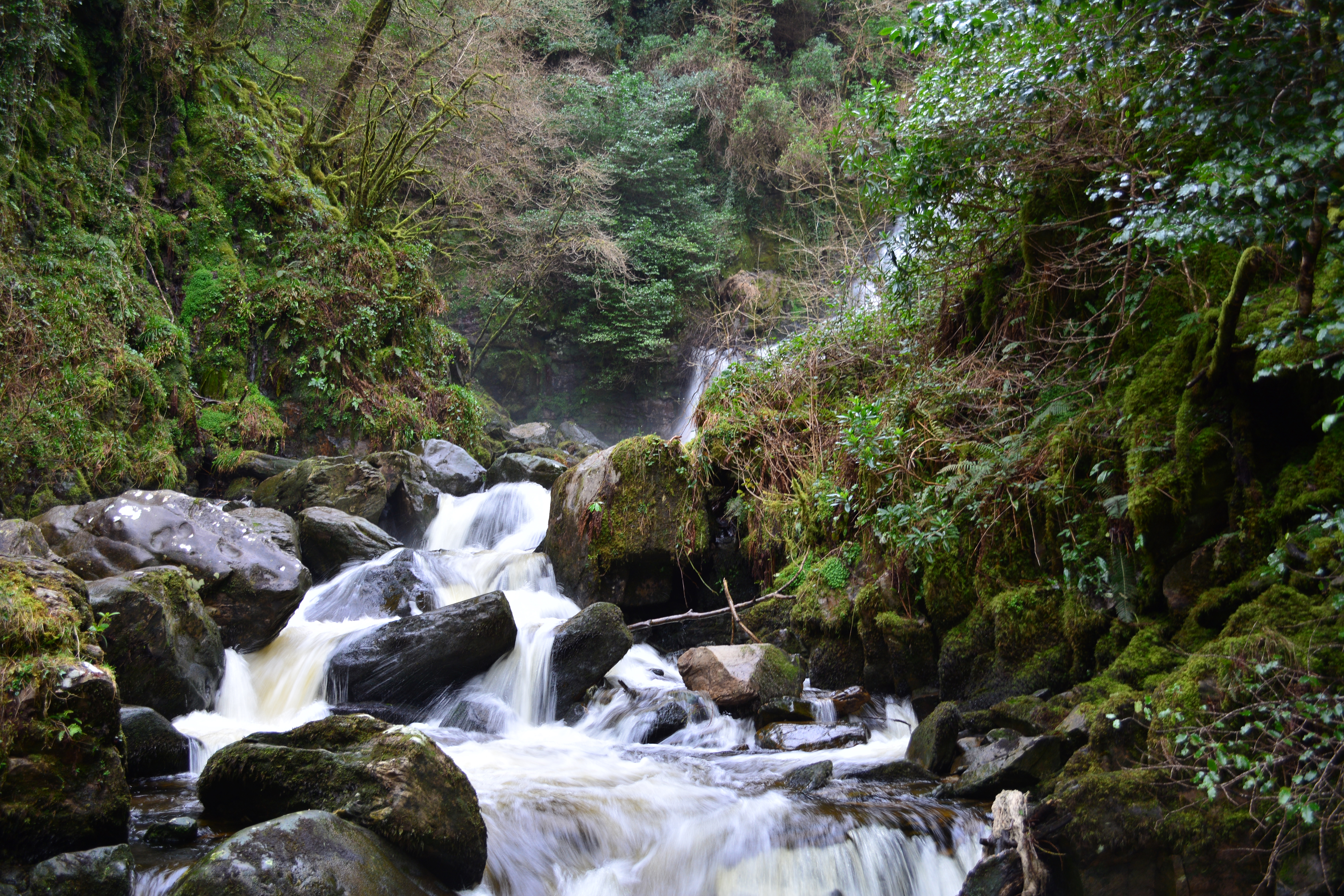Ring of Kerry - 41, Creek, Eire, Ireland, Irland, HQ Photo