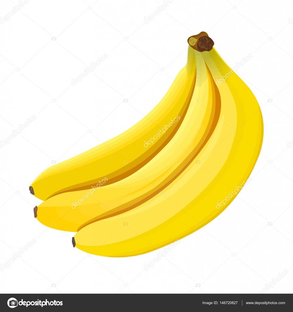 Banana. Ripe bananas isolated on white background — Stock Vector ...