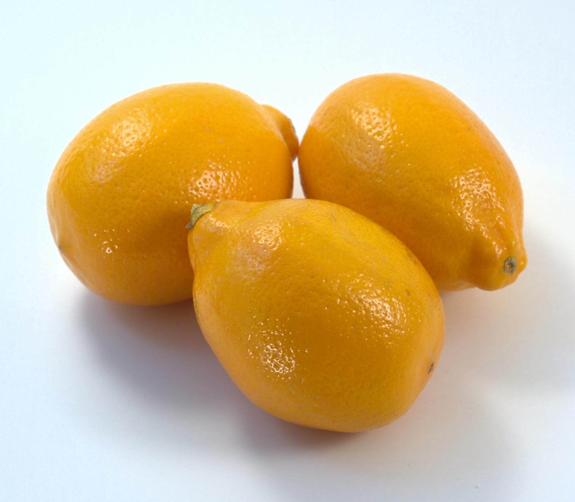 Ripe lemons photo