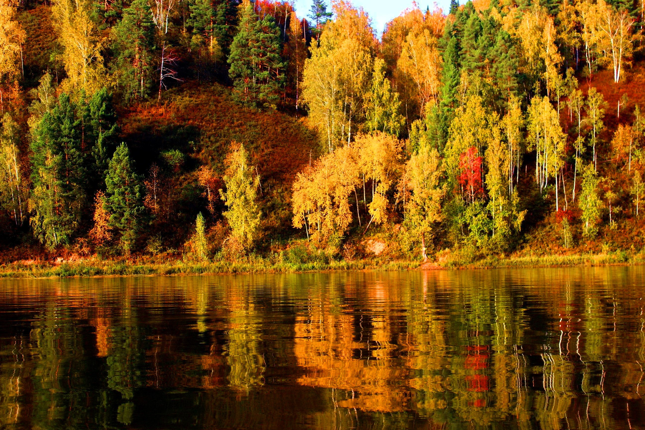 Lake Trees River Tranquility Shore Fall Beautiful Foliage Calmness ...