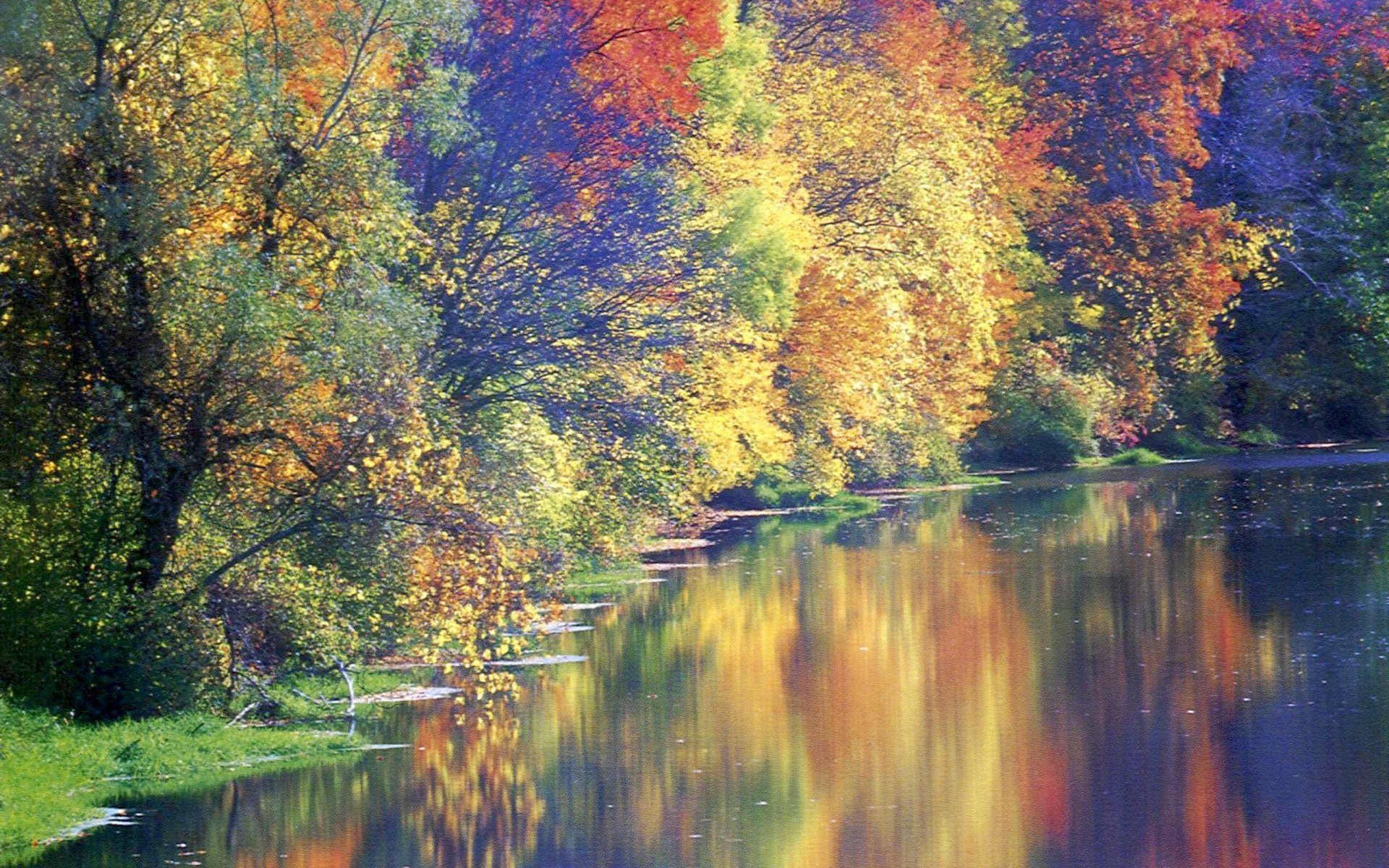 River: Gorgeous Autumn River Reflections Fall Nature Rivers Trees Hd ...