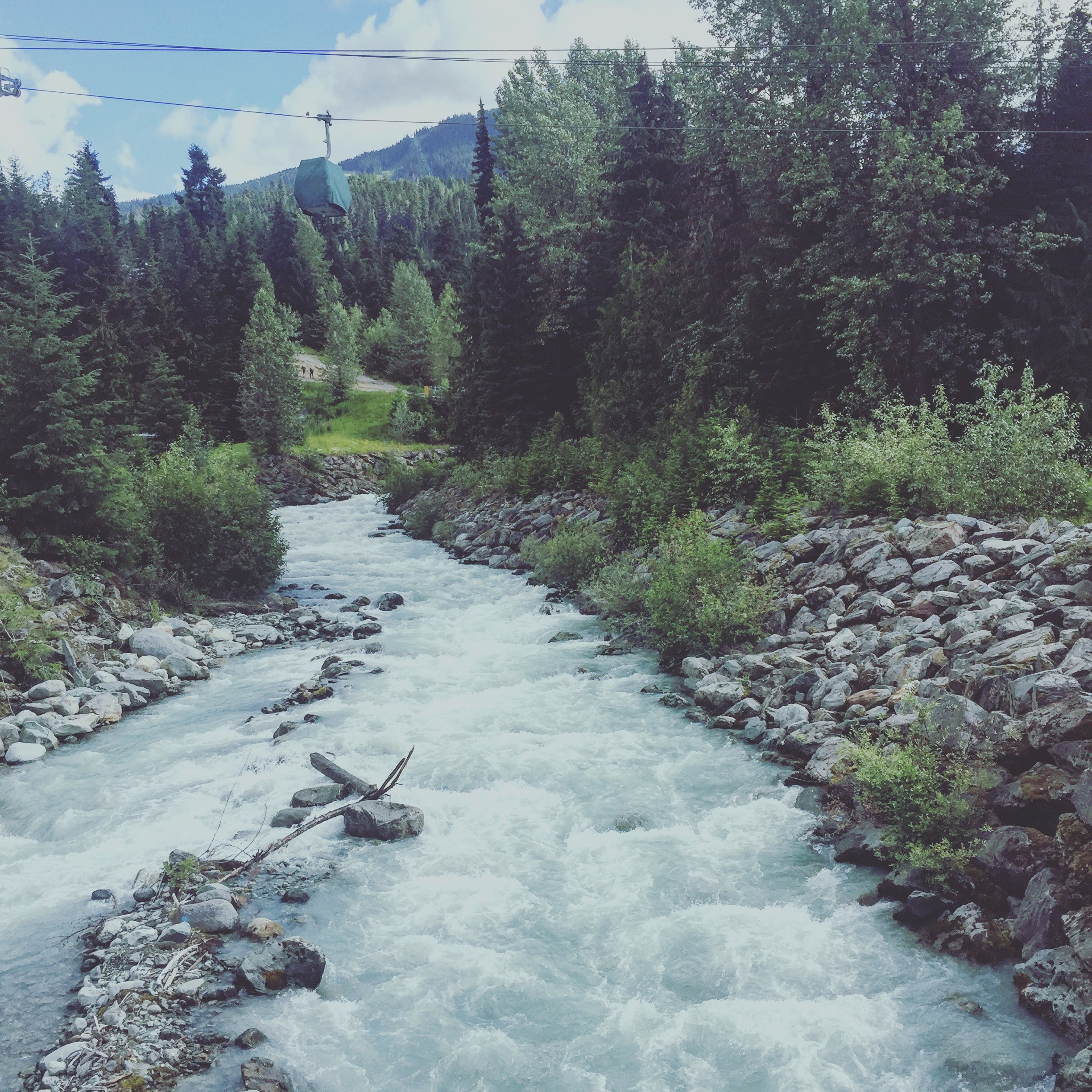 River between of grey pebbles and green trees photo