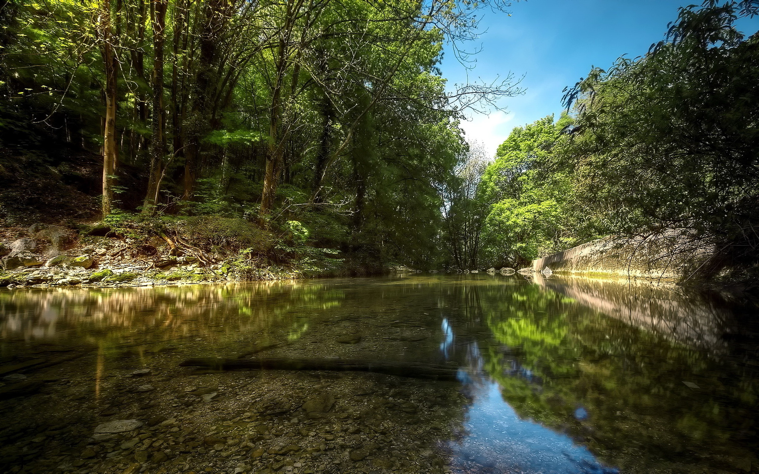 River in the heart of forest / 3000 x 1875 / Forest / Photography ...