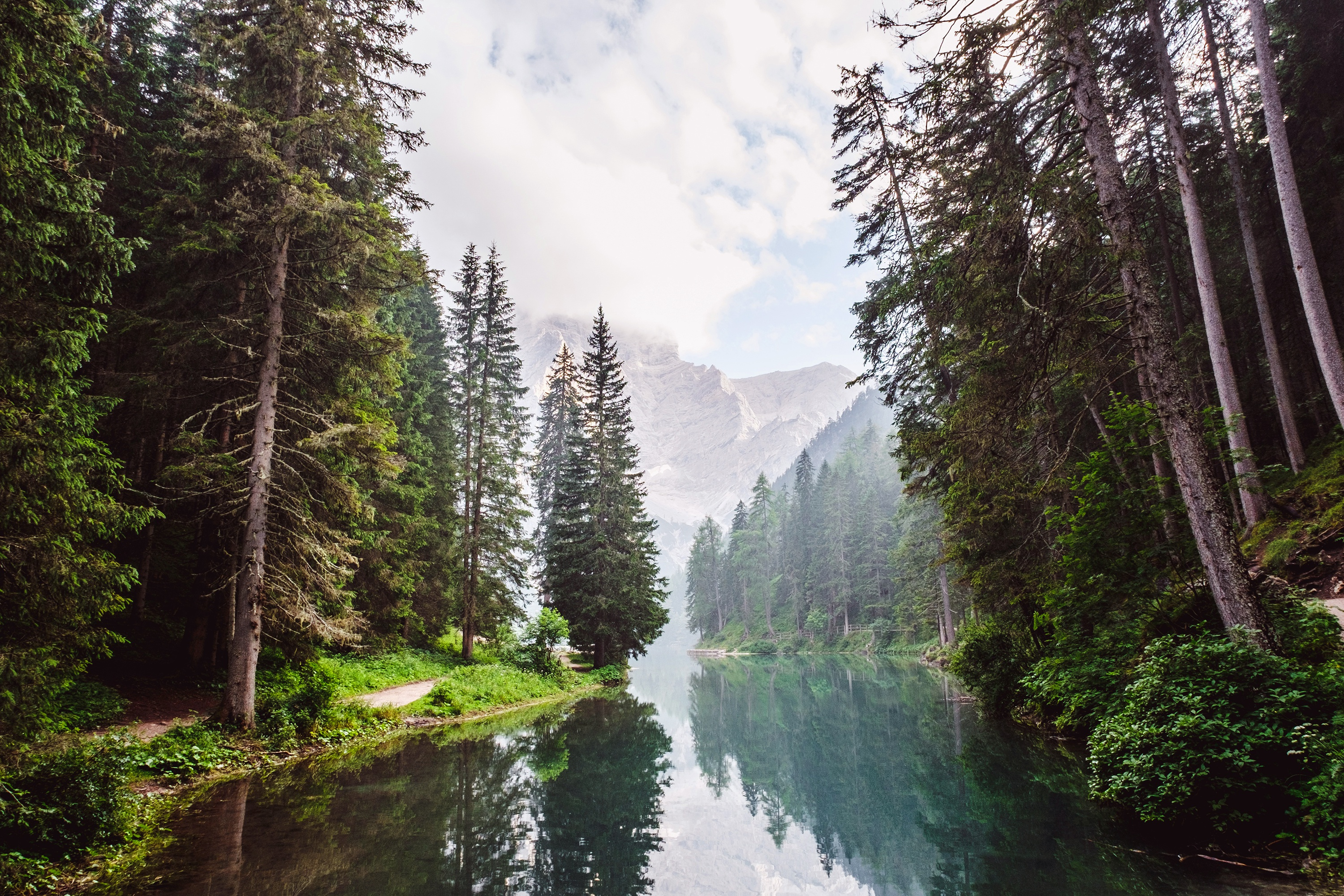 Calm river in the dense forest / 3000 x 2000 / Forest / Photography ...