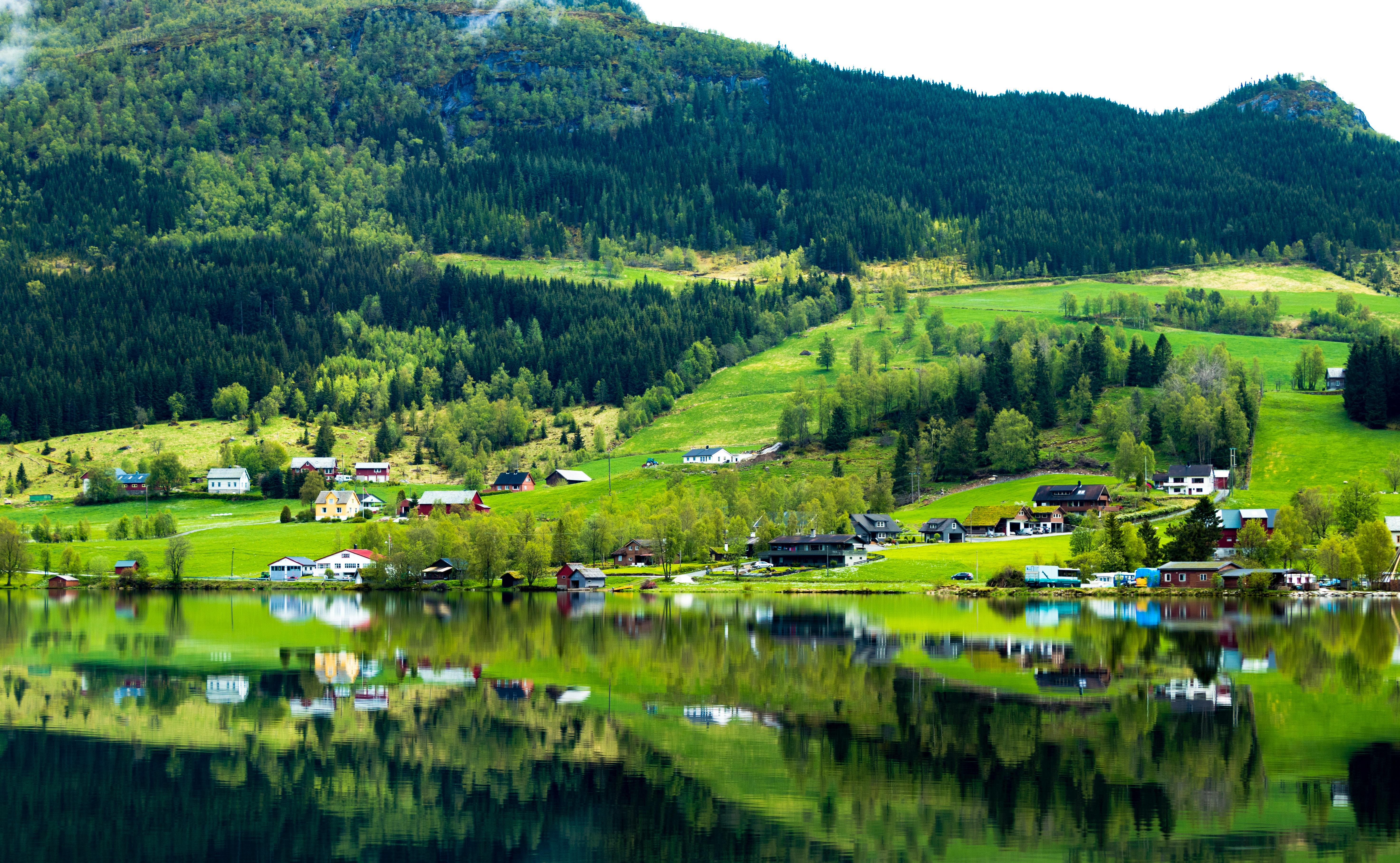 River near green grass field photo