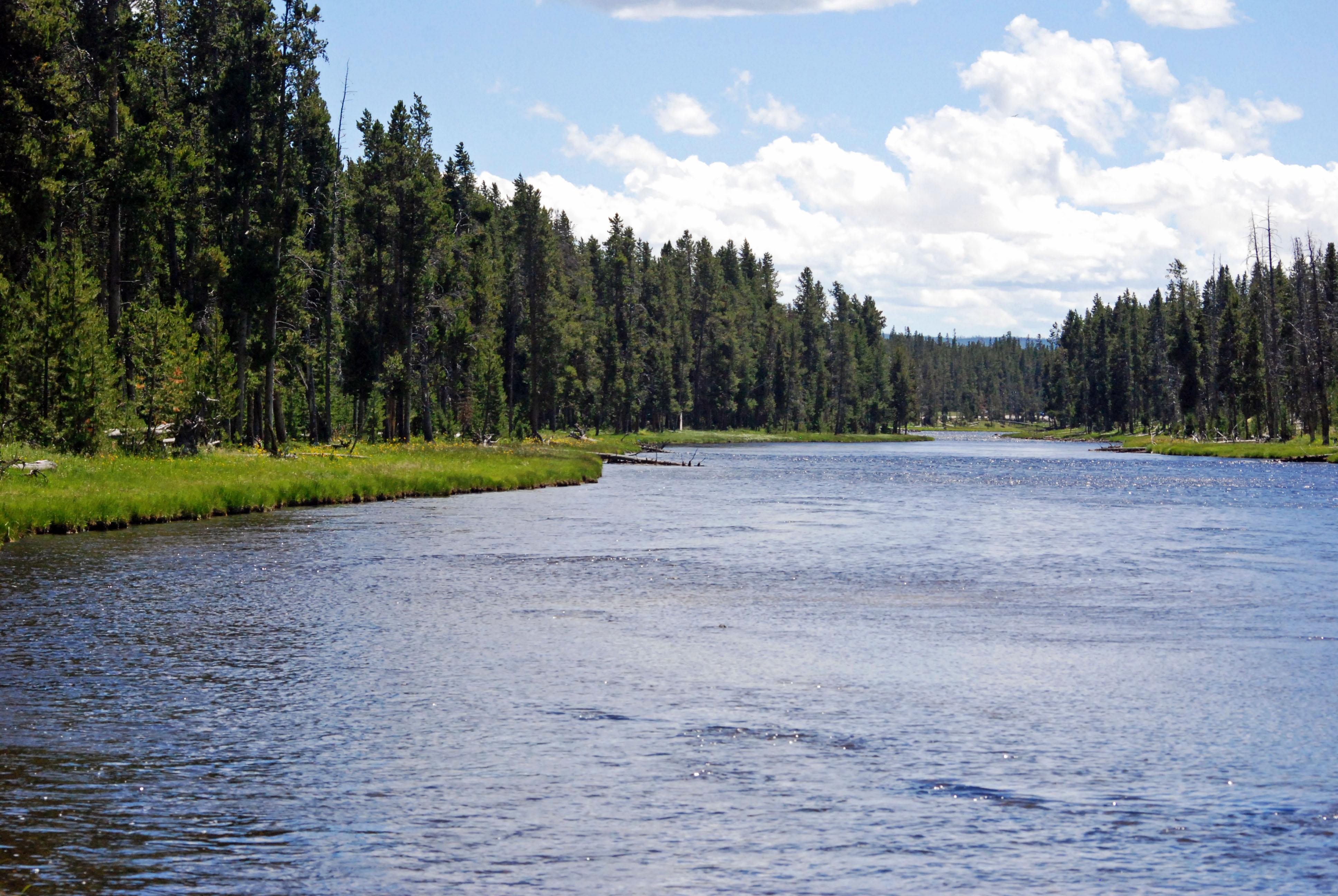 Tranquil River Scene | PhotoIllustrations