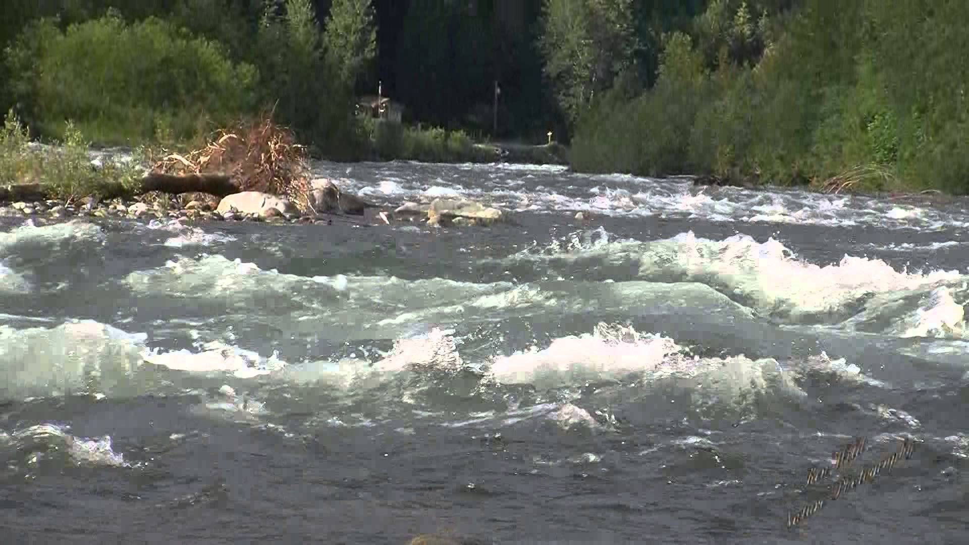 Relaxing sound River water running river sound Nature Sounds Study ...