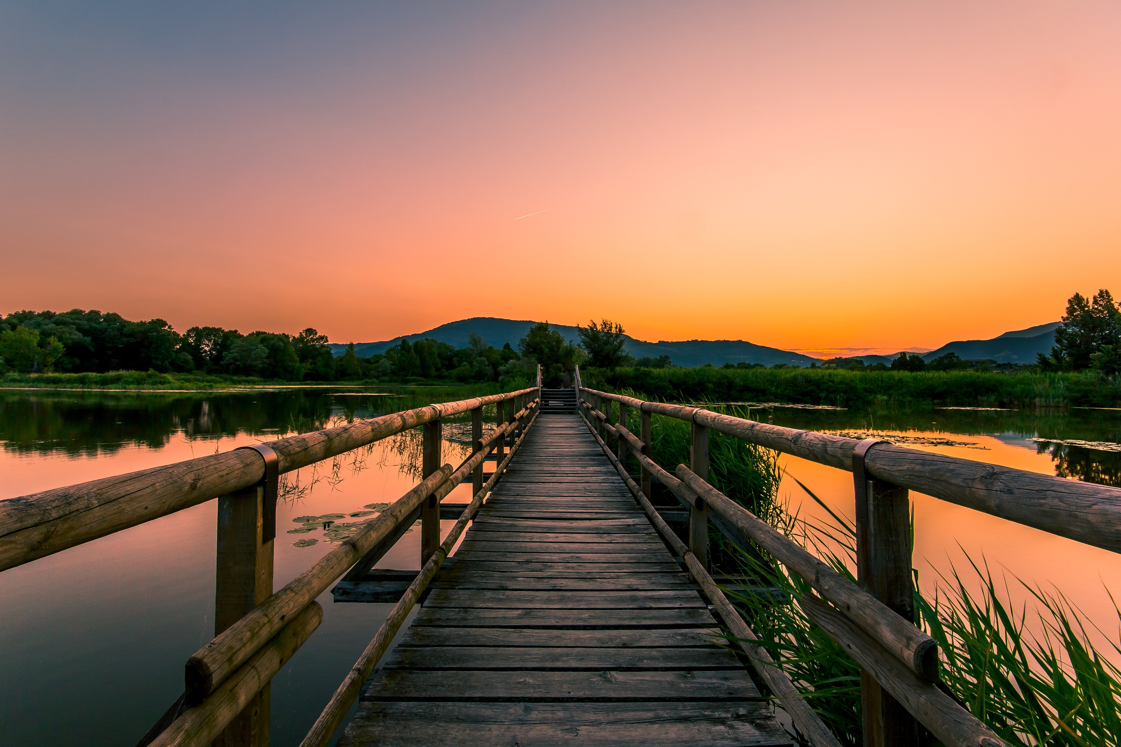 River wood sunset photo