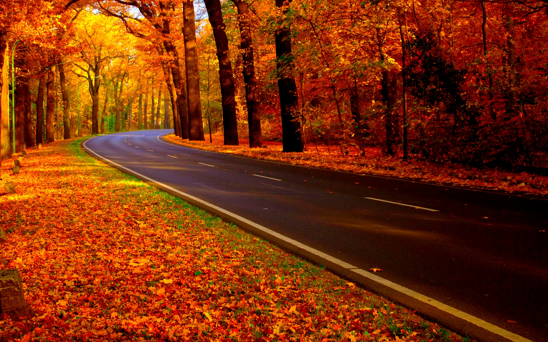 autumn road wallpaper Group with 46 items