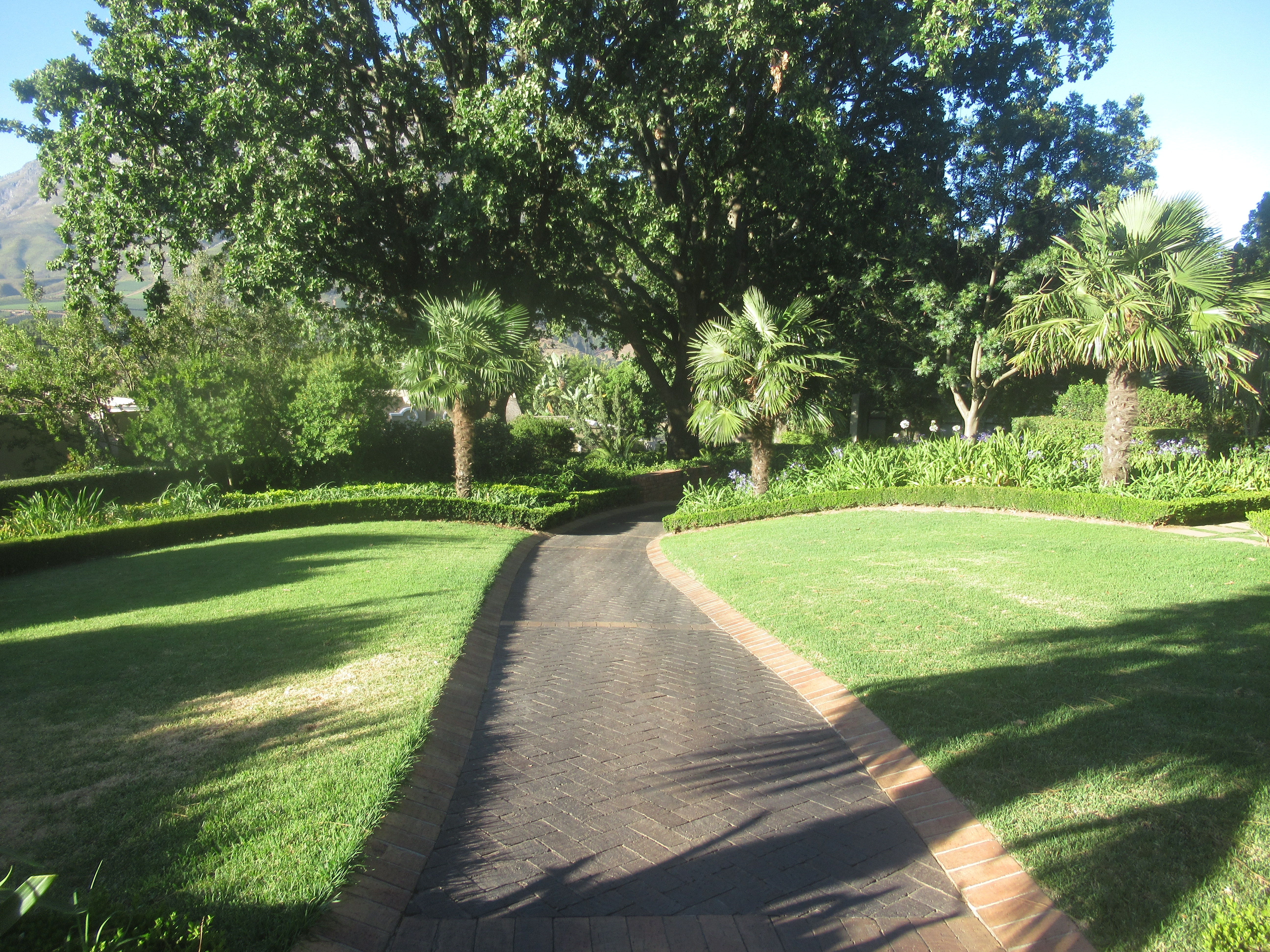 Road in the green garden photo